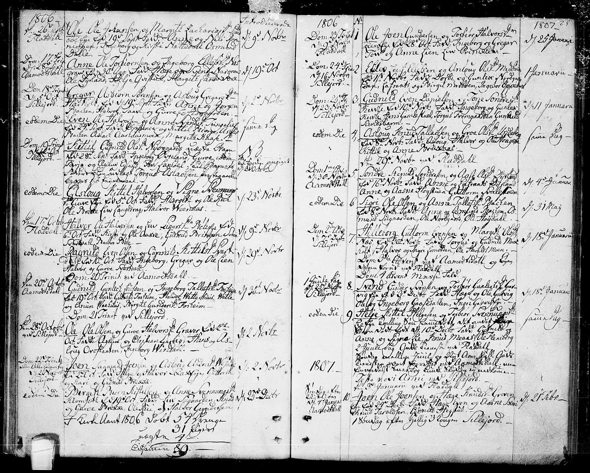 SAKO, Seljord kirkebøker, F/Fa/L0009: Ministerialbok nr. I 9, 1801-1814, s. 25