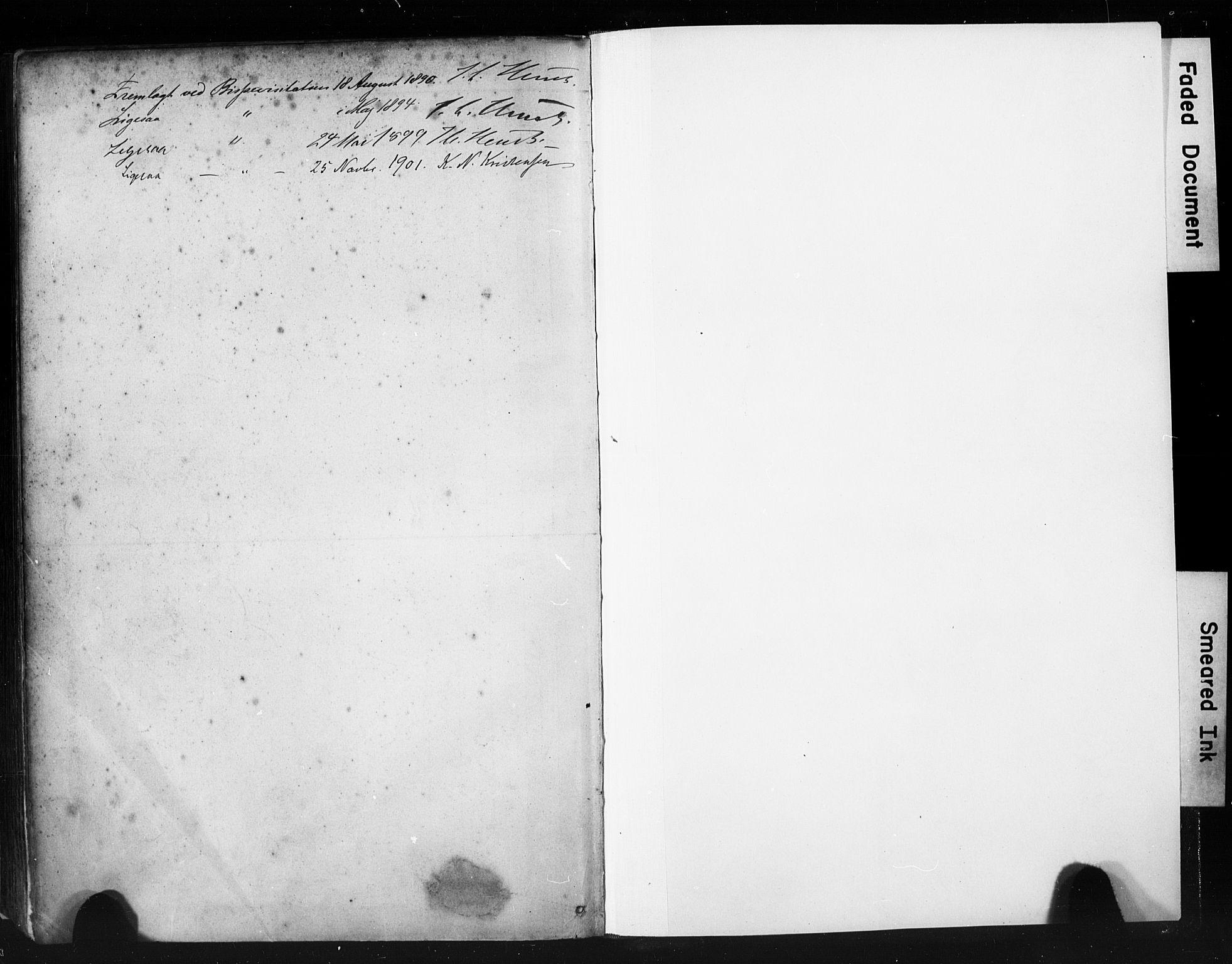 SAST, St. Petri sokneprestkontor, 30/30BA/L0019: Ministerialbok nr. A 20, 1888-1901