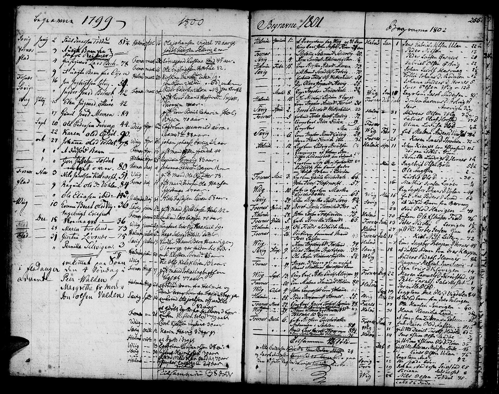 SAT, Ministerialprotokoller, klokkerbøker og fødselsregistre - Nord-Trøndelag, 773/L0608: Ministerialbok nr. 773A02, 1784-1816, s. 255