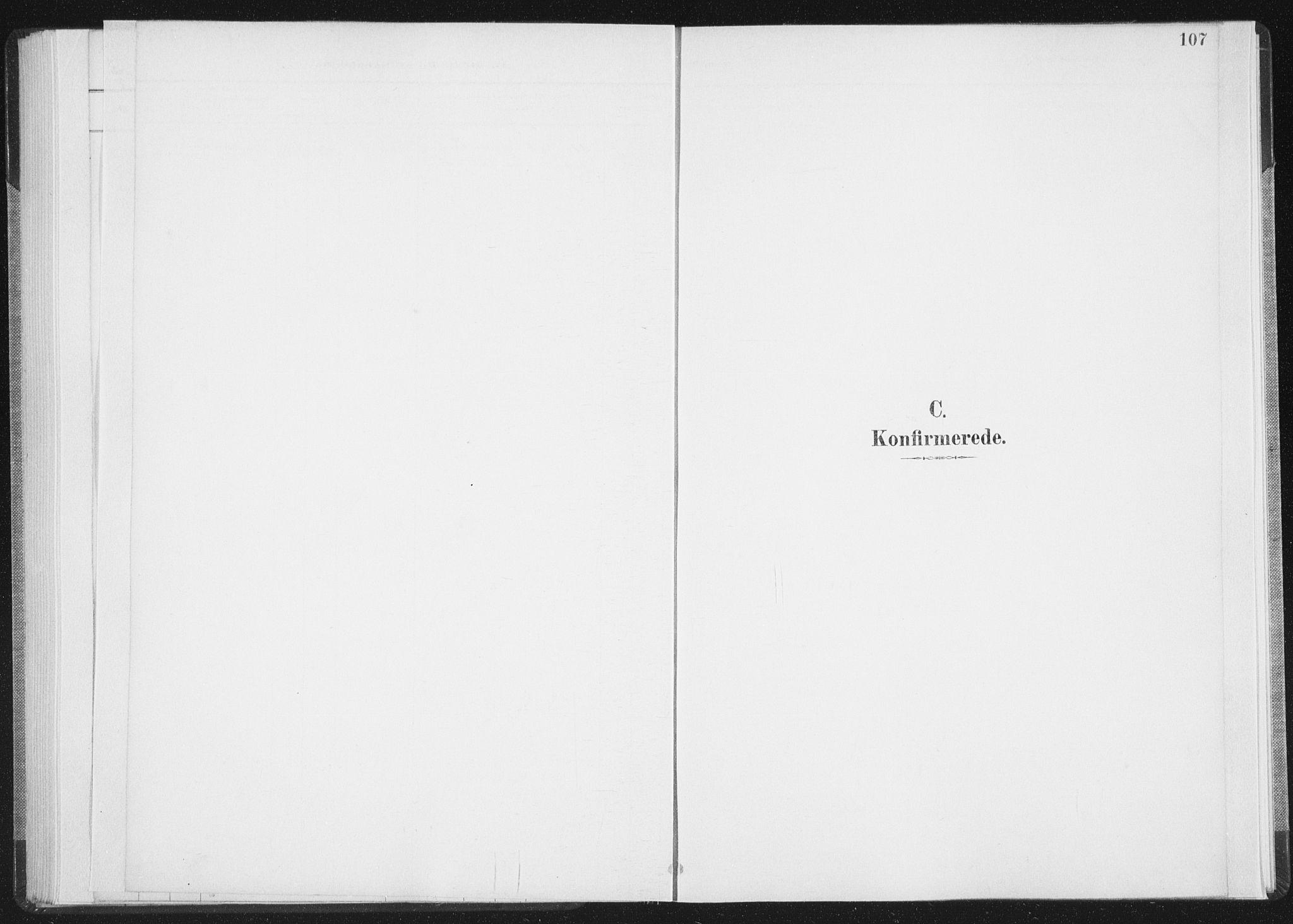 SAT, Ministerialprotokoller, klokkerbøker og fødselsregistre - Nordland, 898/L1422: Ministerialbok nr. 898A02, 1887-1908, s. 107