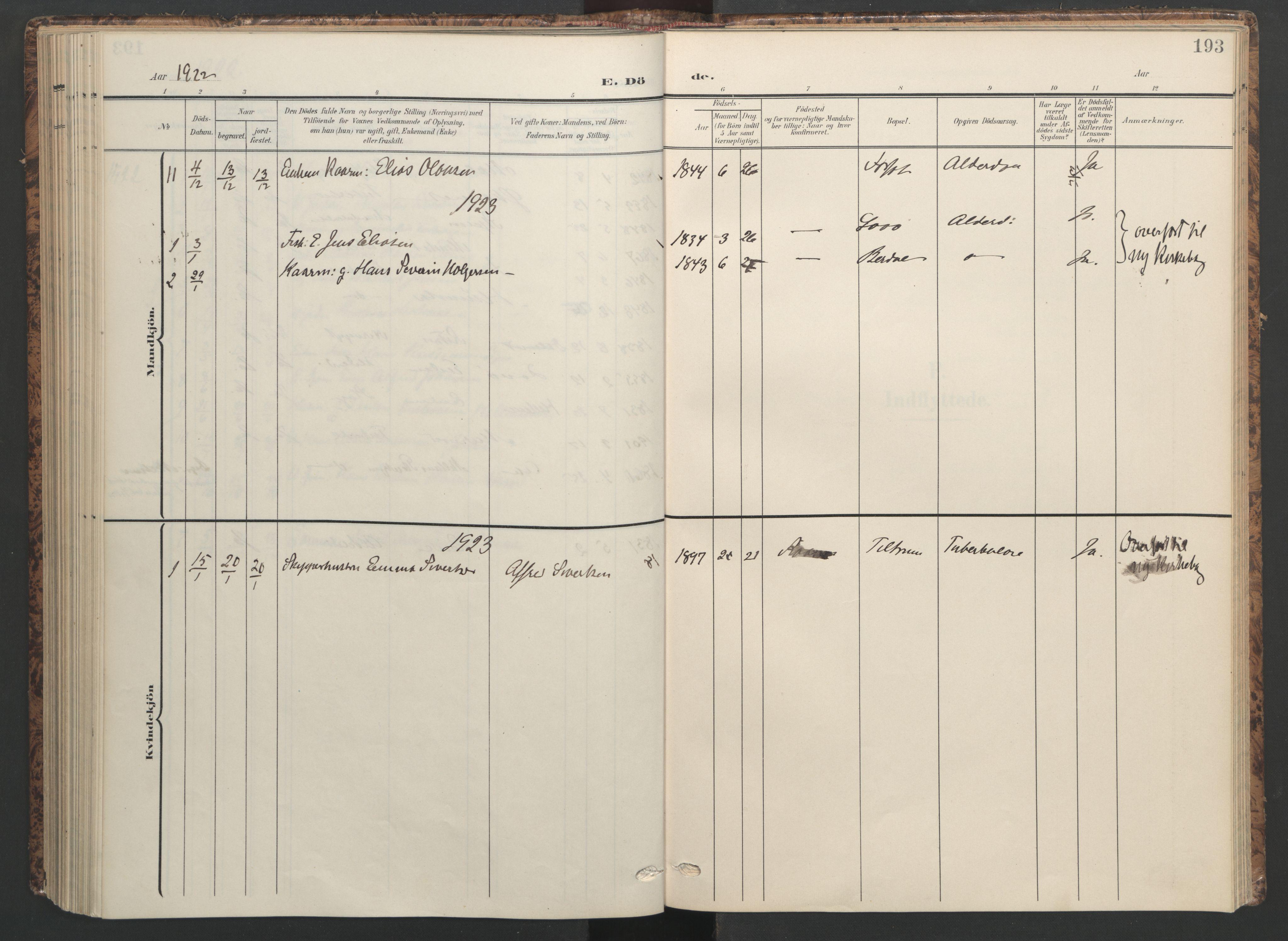 SAT, Ministerialprotokoller, klokkerbøker og fødselsregistre - Sør-Trøndelag, 655/L0682: Ministerialbok nr. 655A11, 1908-1922, s. 193