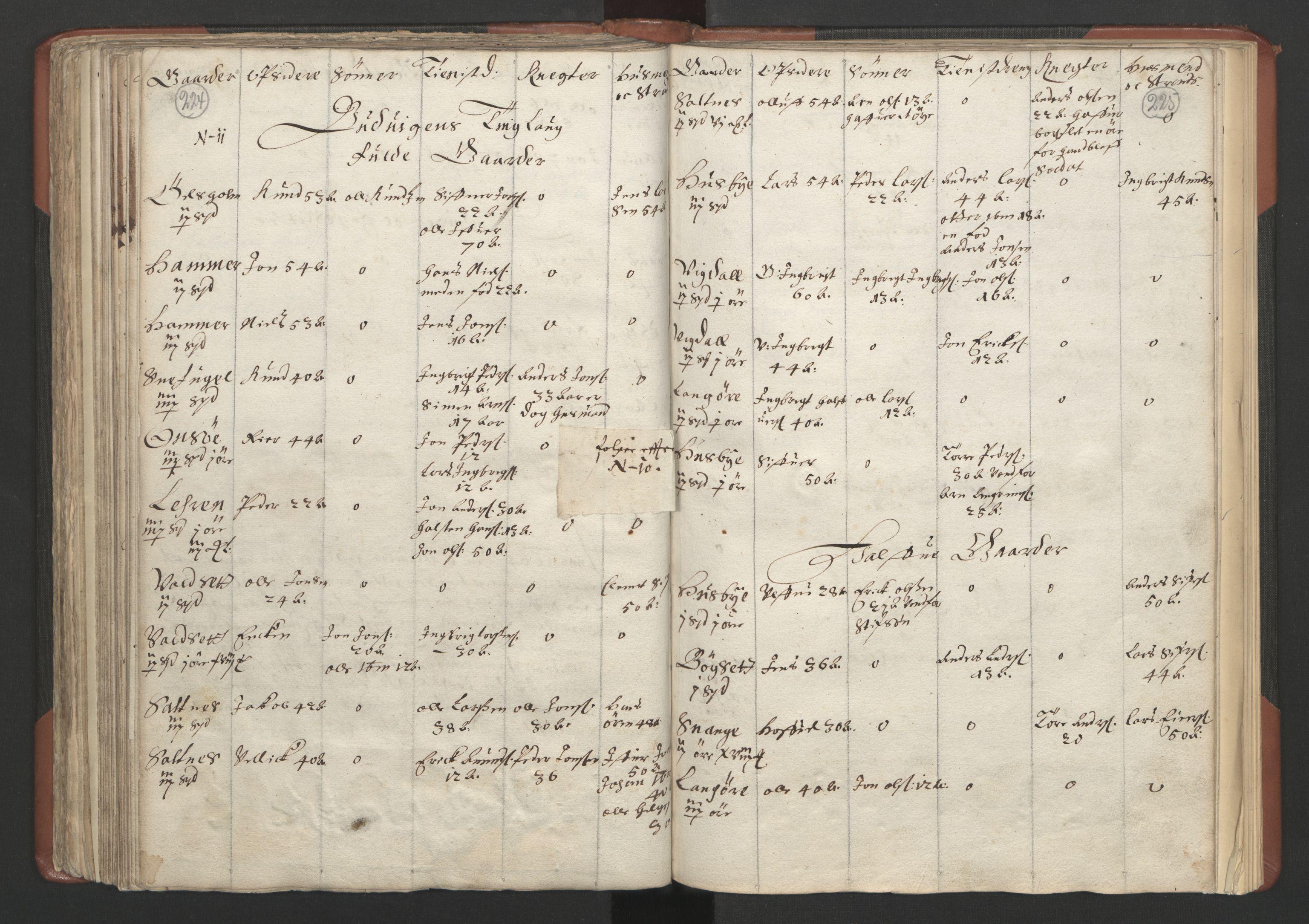 RA, Fogdenes og sorenskrivernes manntall 1664-1666, nr. 18: Gauldal fogderi, Strinda fogderi og Orkdal fogderi, 1664, s. 224-225