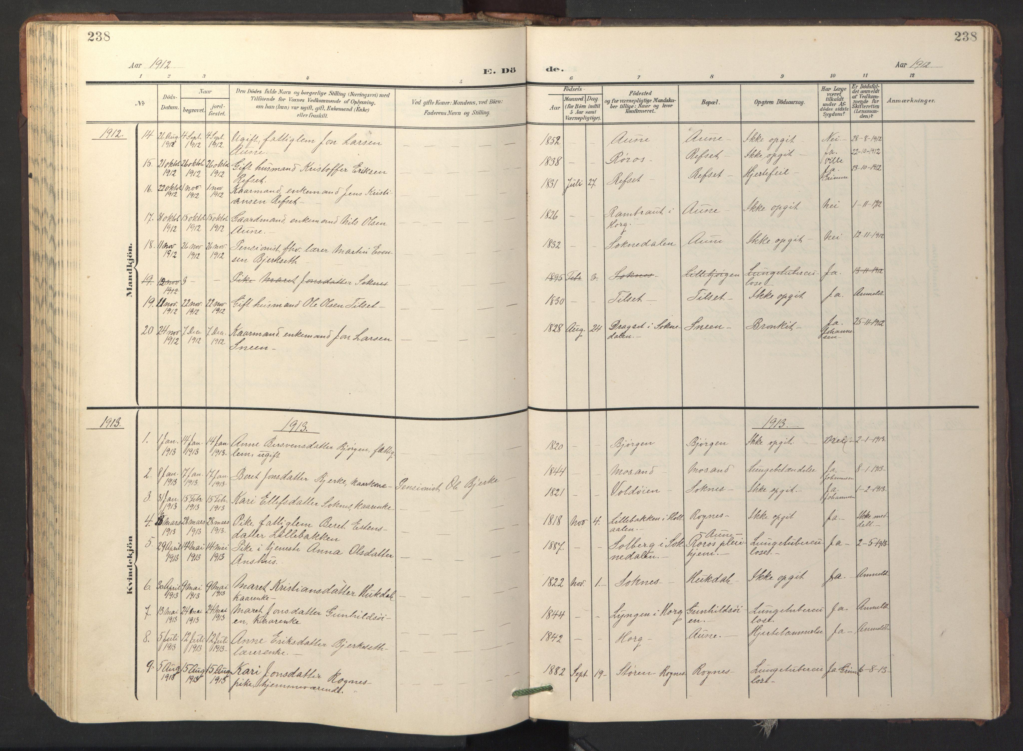 SAT, Ministerialprotokoller, klokkerbøker og fødselsregistre - Sør-Trøndelag, 687/L1019: Klokkerbok nr. 687C03, 1904-1931, s. 238