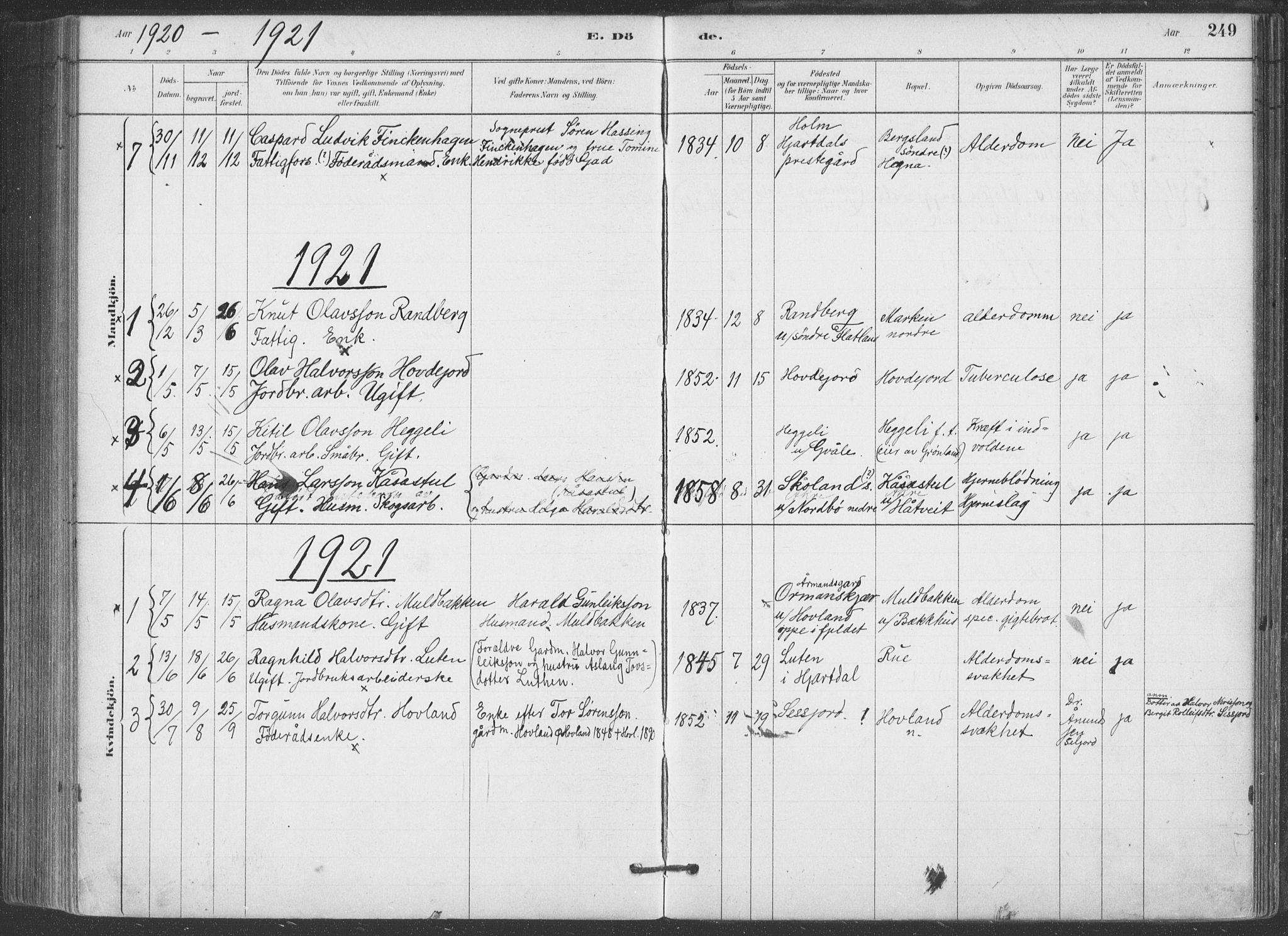 SAKO, Hjartdal kirkebøker, F/Fa/L0010: Ministerialbok nr. I 10, 1880-1929, s. 249