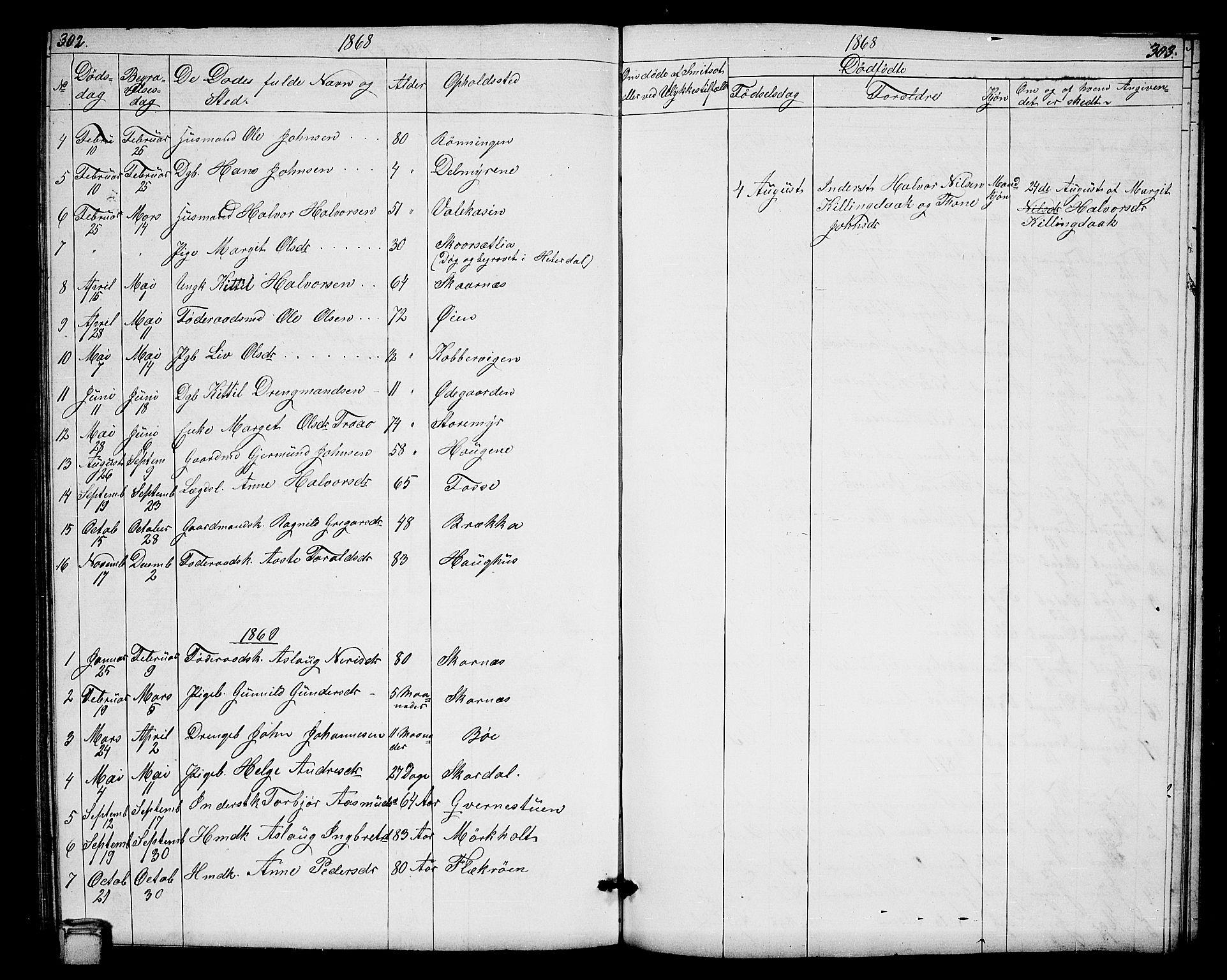 SAKO, Hjartdal kirkebøker, G/Gb/L0002: Klokkerbok nr. II 2, 1854-1884, s. 302-303