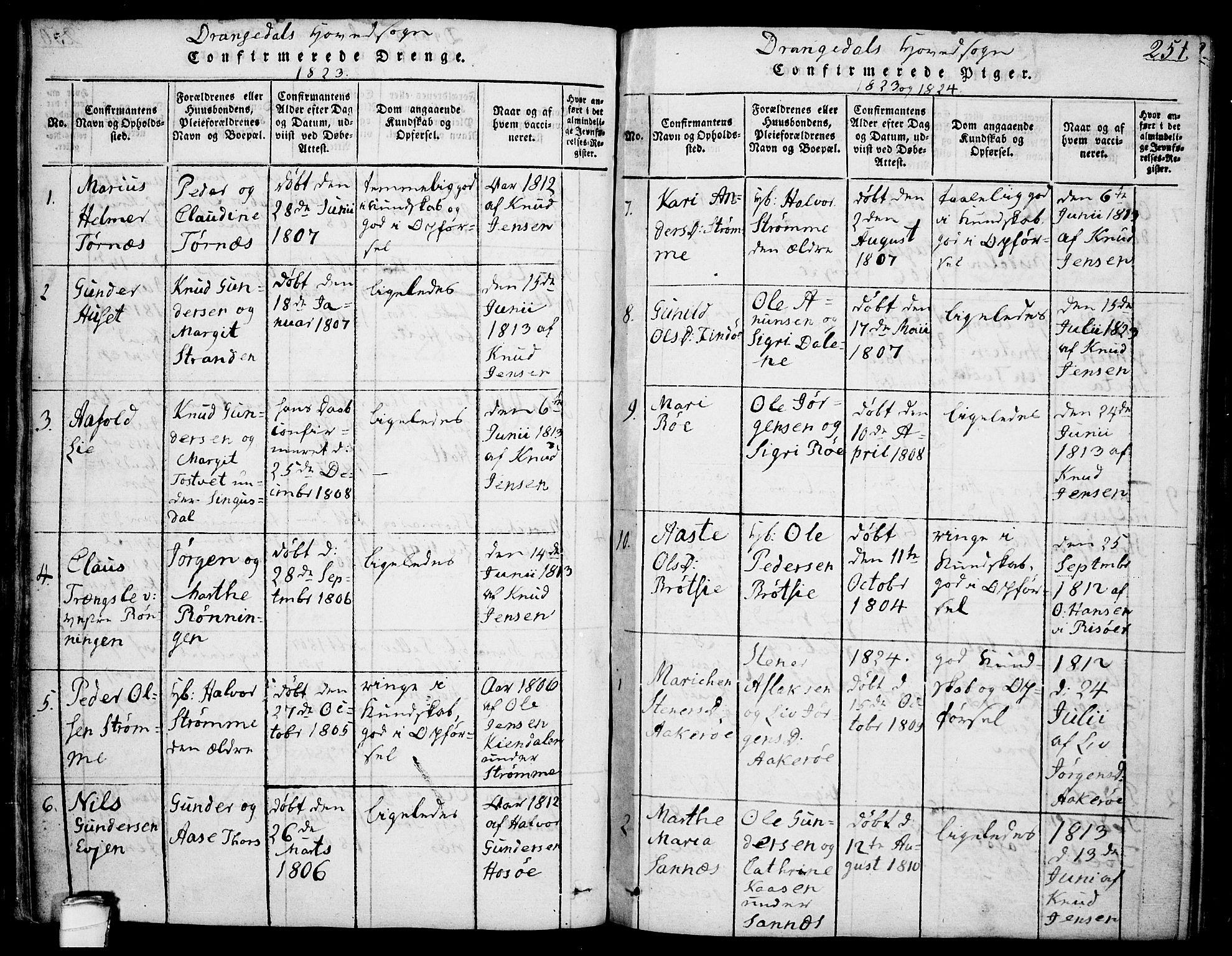 SAKO, Drangedal kirkebøker, F/Fa/L0005: Ministerialbok nr. 5 /1, 1814-1831, s. 251