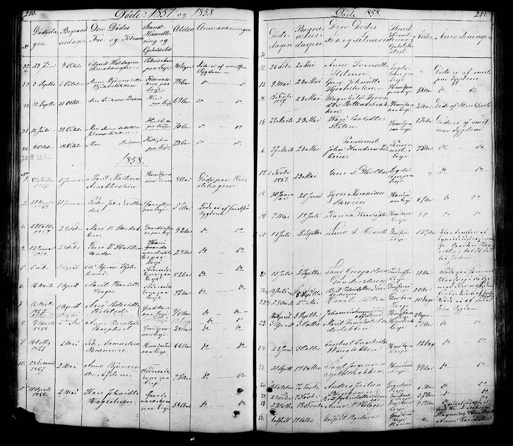 SAH, Lesja prestekontor, Klokkerbok nr. 5, 1850-1894, s. 250-251