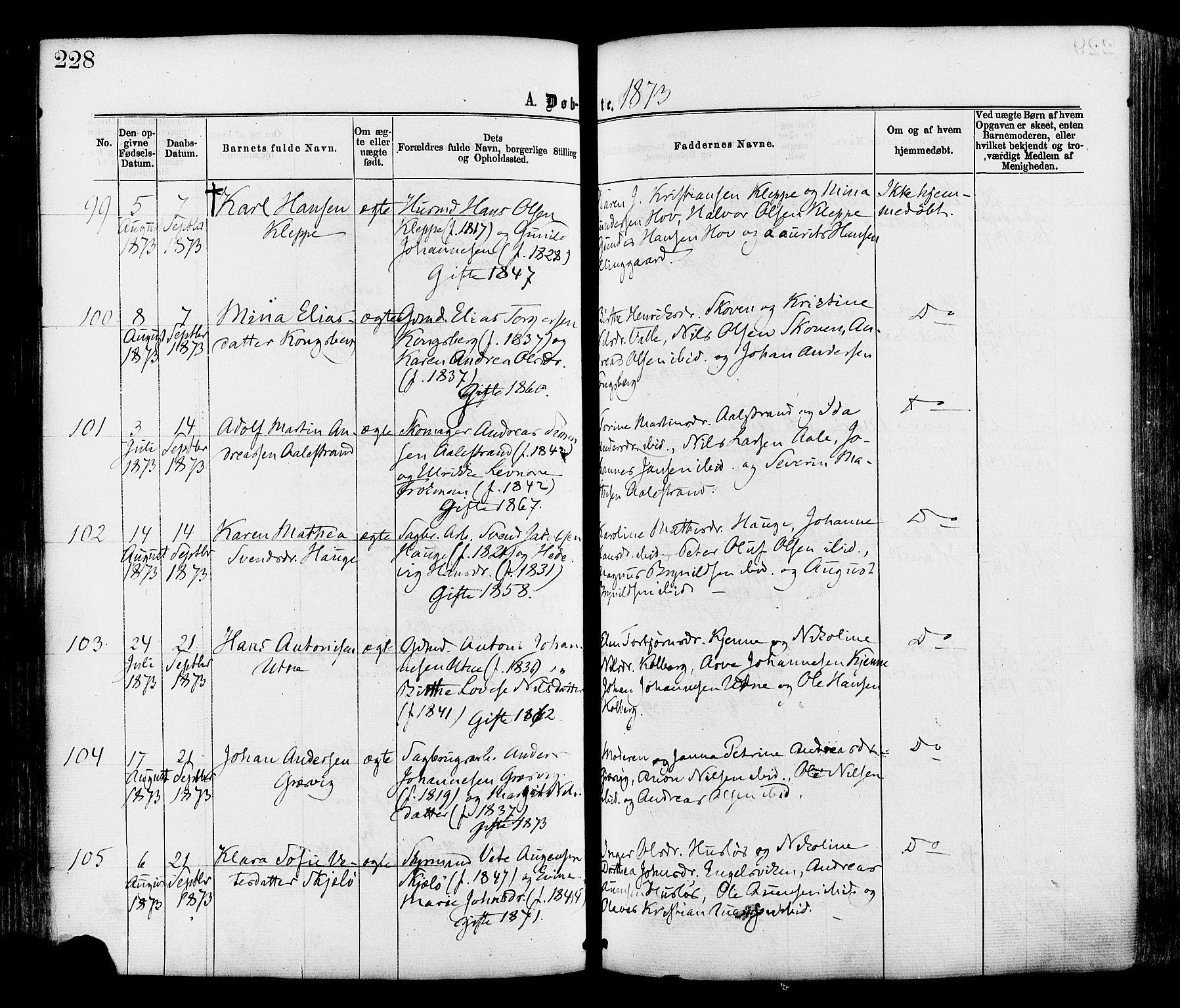 SAO, Onsøy prestekontor Kirkebøker, F/Fa/L0004: Ministerialbok nr. I 4, 1861-1877, s. 228
