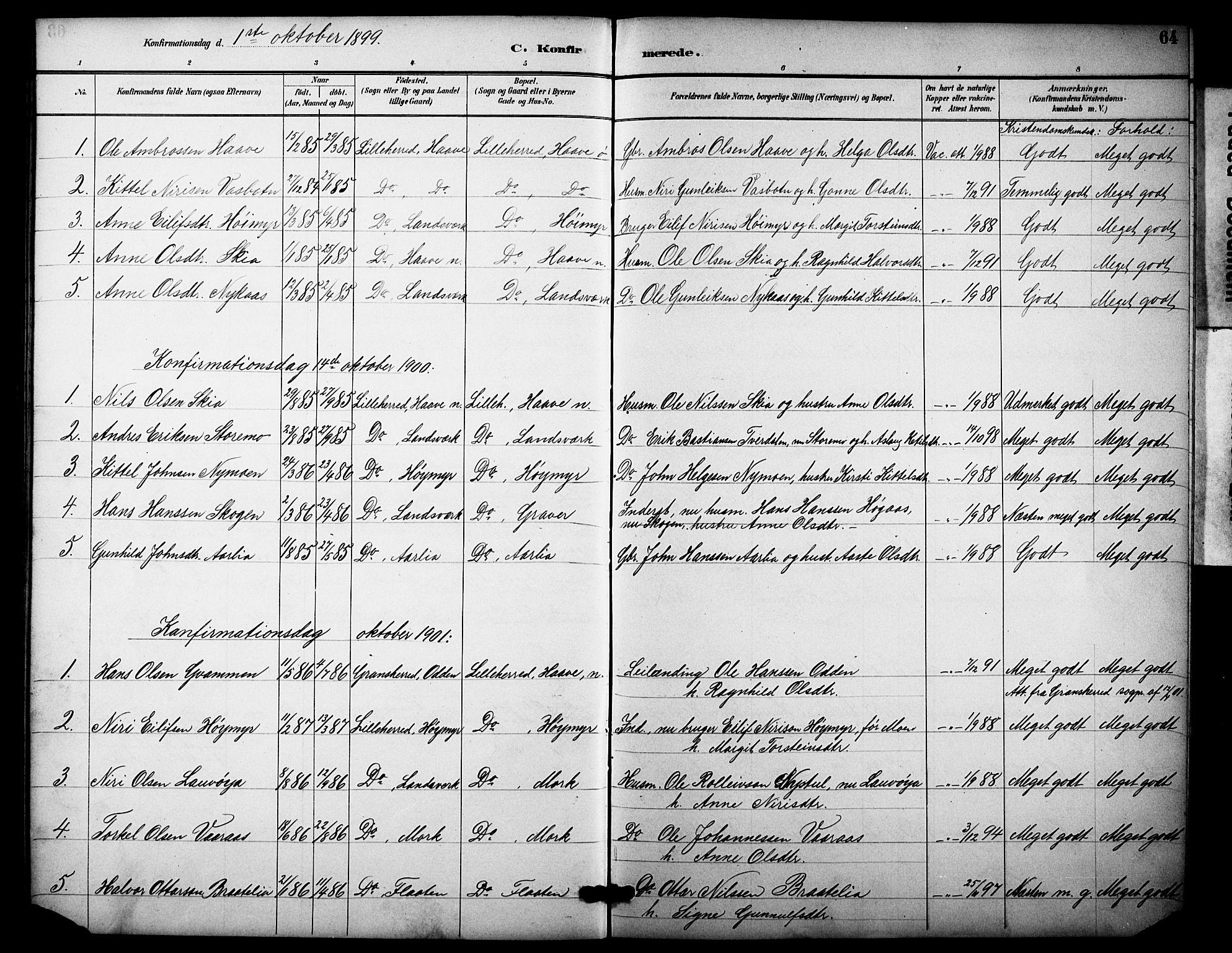 SAKO, Heddal kirkebøker, F/Fb/L0001: Ministerialbok nr. II 1, 1884-1910, s. 64