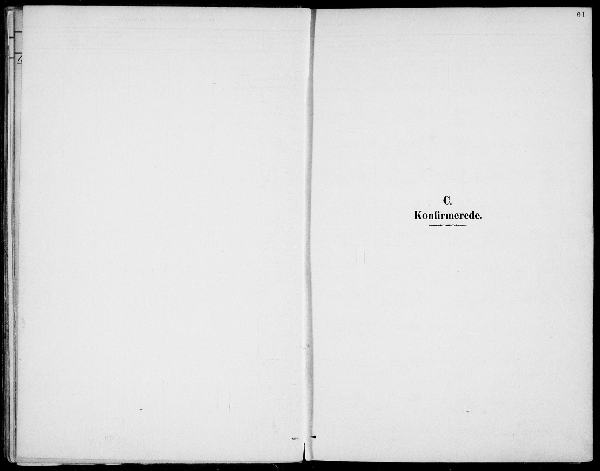 SAKO, Fyresdal kirkebøker, F/Fa/L0007: Ministerialbok nr. I 7, 1887-1914, s. 61