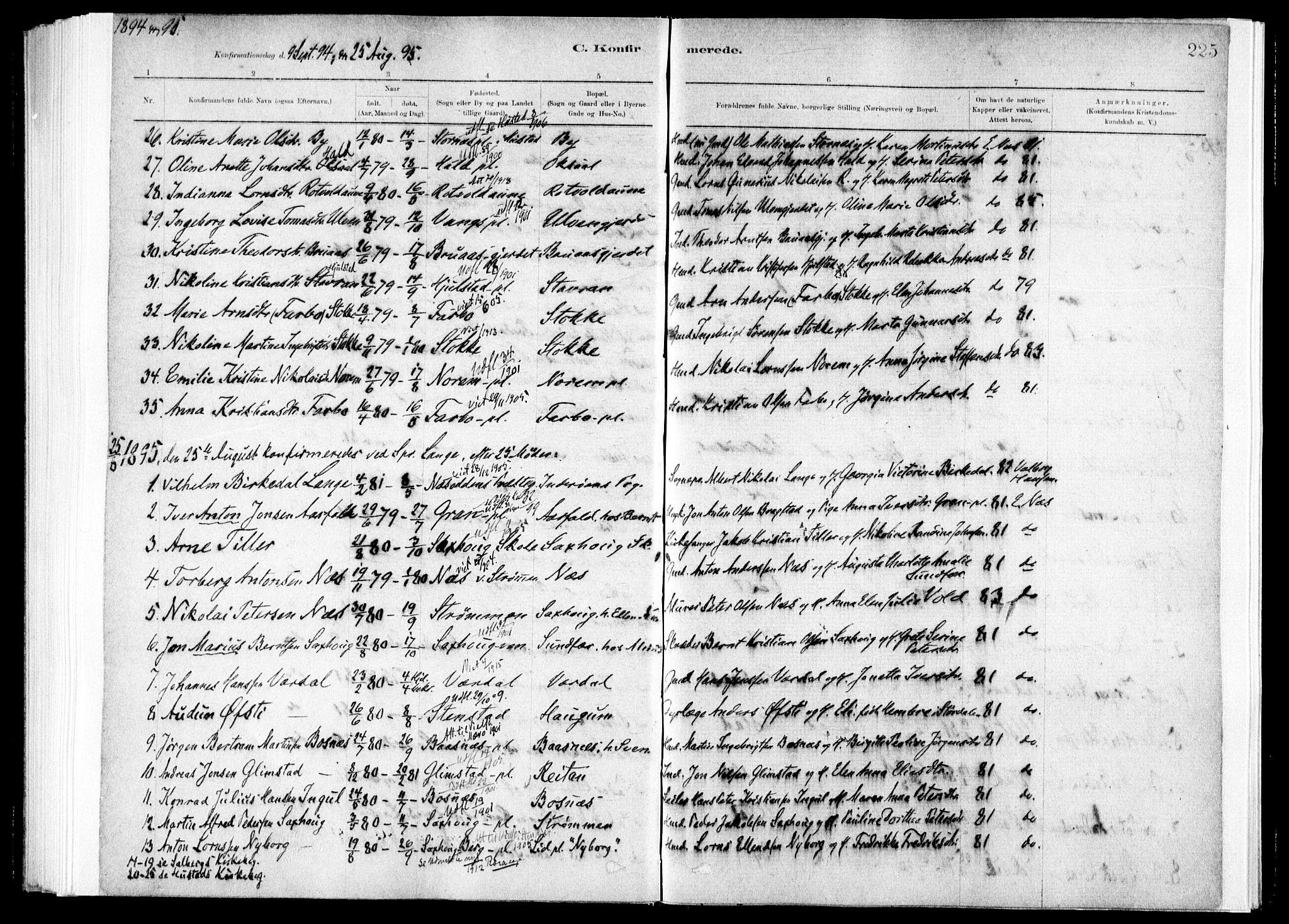 SAT, Ministerialprotokoller, klokkerbøker og fødselsregistre - Nord-Trøndelag, 730/L0285: Ministerialbok nr. 730A10, 1879-1914, s. 225