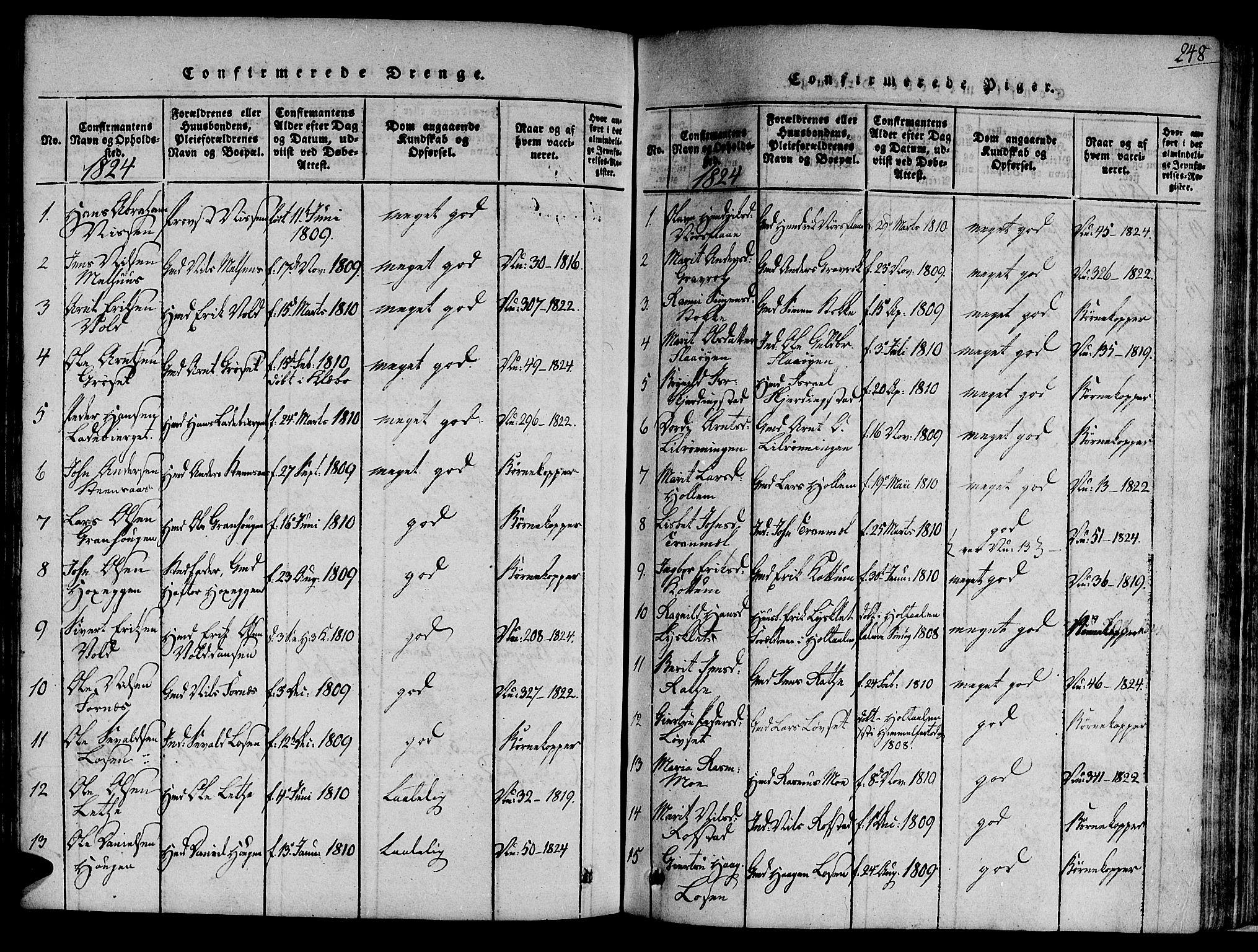SAT, Ministerialprotokoller, klokkerbøker og fødselsregistre - Sør-Trøndelag, 691/L1065: Ministerialbok nr. 691A03 /1, 1816-1826, s. 248