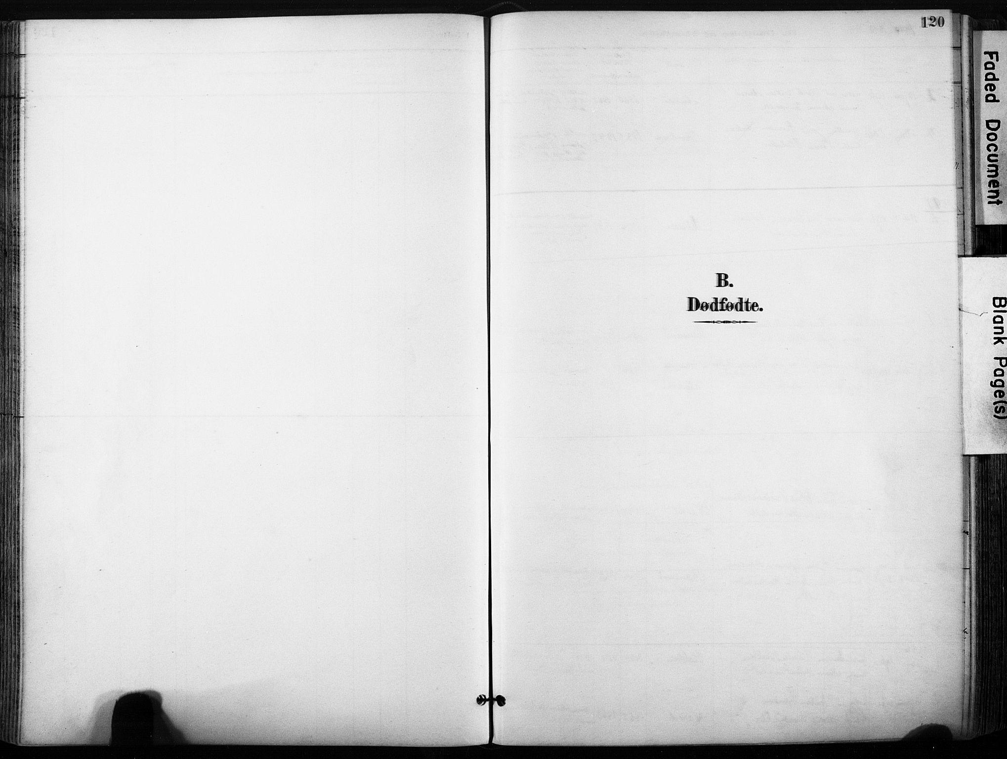 SAT, Ministerialprotokoller, klokkerbøker og fødselsregistre - Sør-Trøndelag, 640/L0579: Ministerialbok nr. 640A04, 1889-1902, s. 120