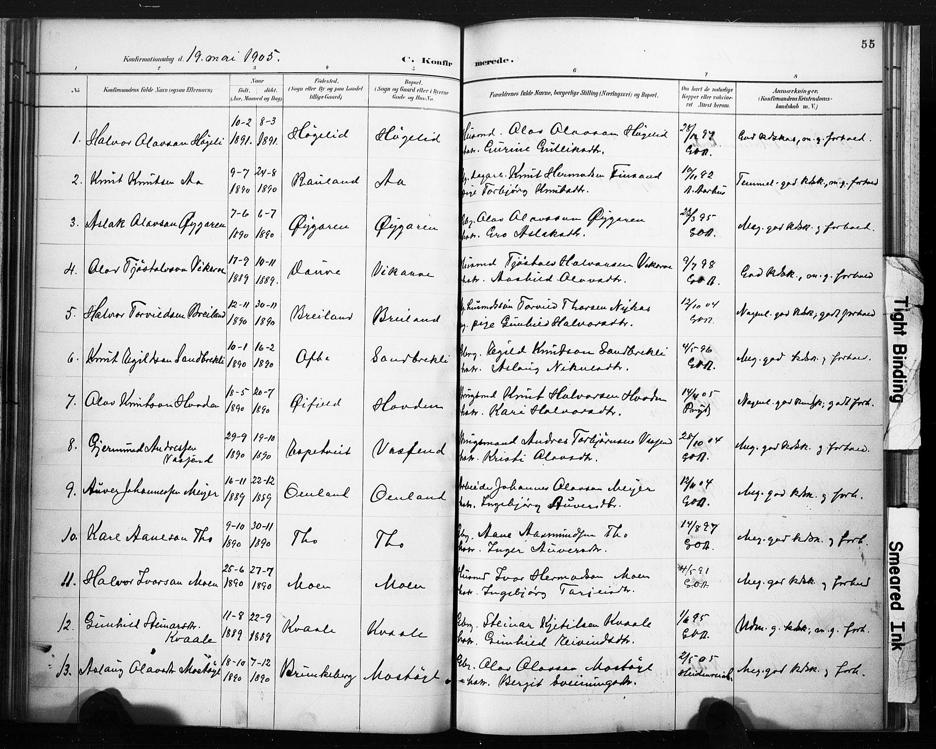 SAKO, Lårdal kirkebøker, F/Fc/L0002: Ministerialbok nr. III 2, 1887-1906, s. 55