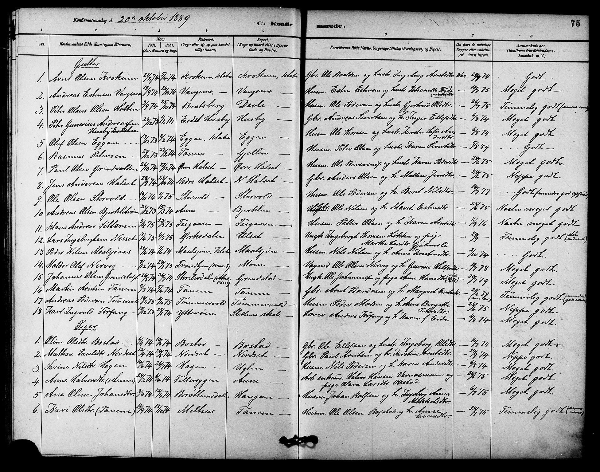 SAT, Ministerialprotokoller, klokkerbøker og fødselsregistre - Sør-Trøndelag, 618/L0444: Ministerialbok nr. 618A07, 1880-1898, s. 75