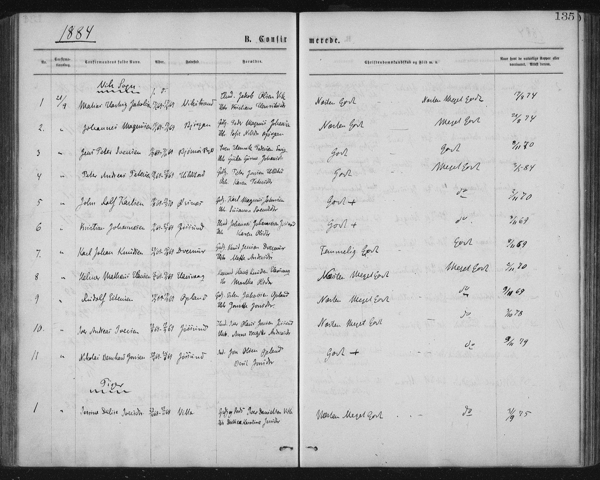 SAT, Ministerialprotokoller, klokkerbøker og fødselsregistre - Nord-Trøndelag, 771/L0596: Ministerialbok nr. 771A03, 1870-1884, s. 135