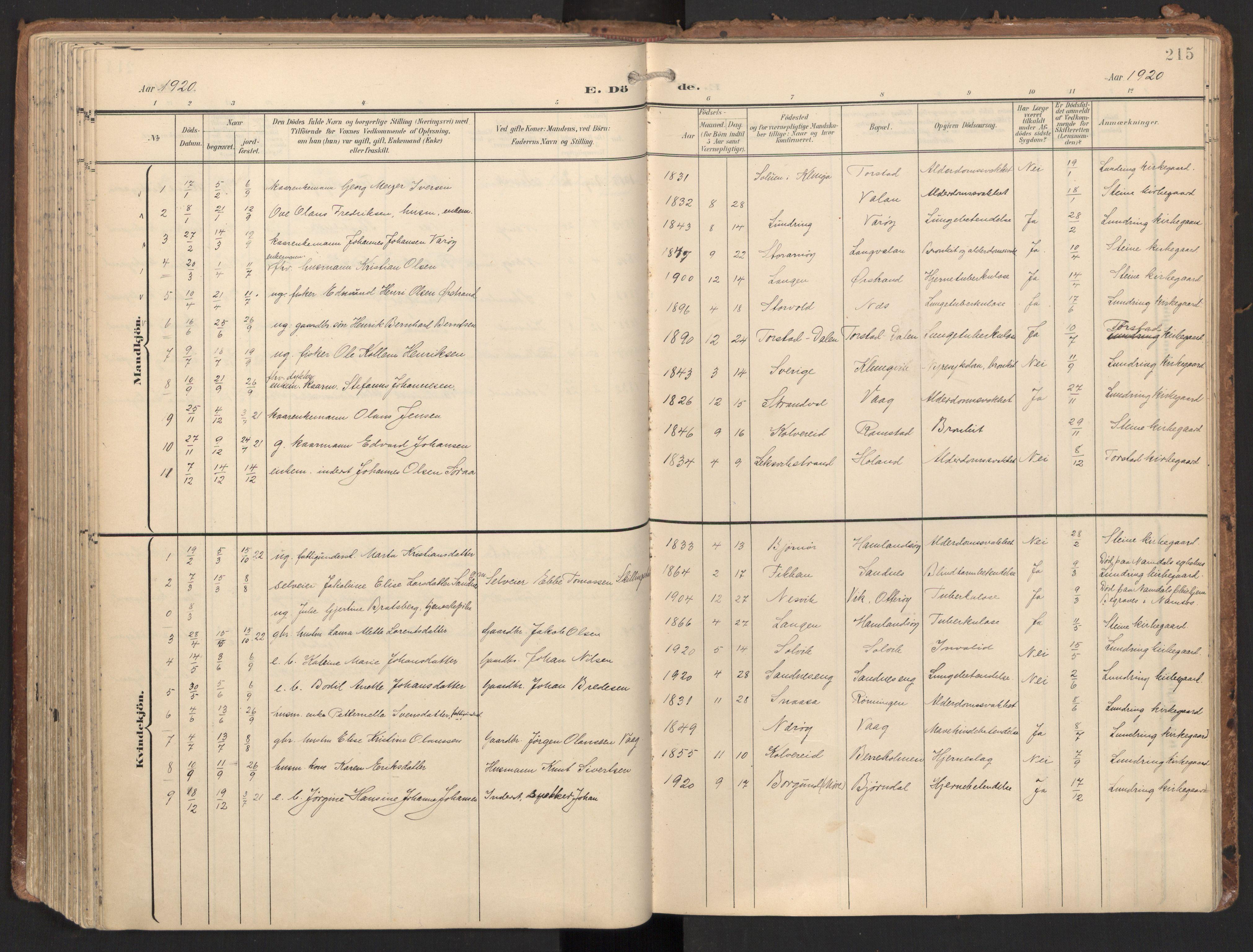 SAT, Ministerialprotokoller, klokkerbøker og fødselsregistre - Nord-Trøndelag, 784/L0677: Ministerialbok nr. 784A12, 1900-1920, s. 215
