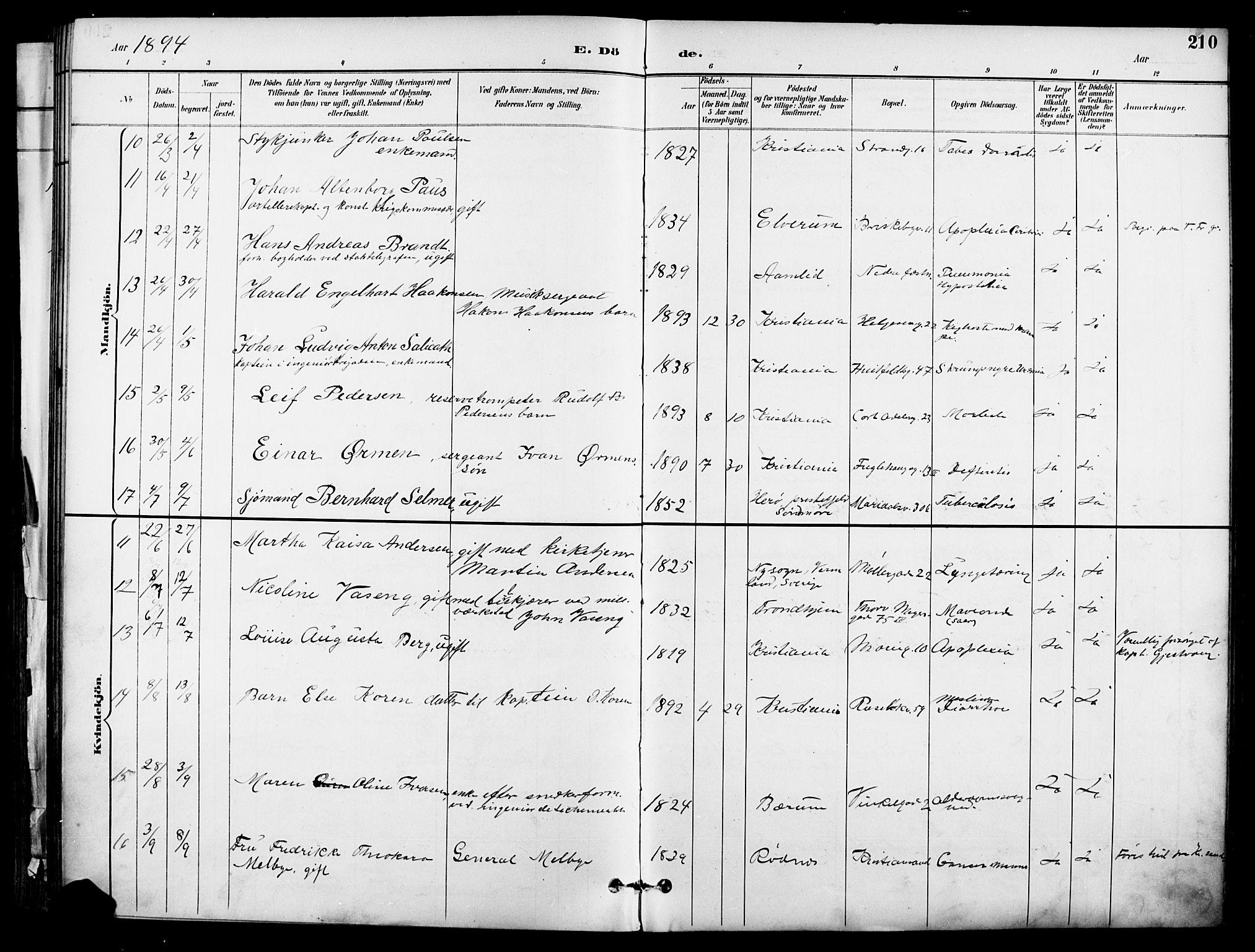SAO, Garnisonsmenigheten Kirkebøker, F/Fa/L0013: Ministerialbok nr. 13, 1894-1904, s. 210