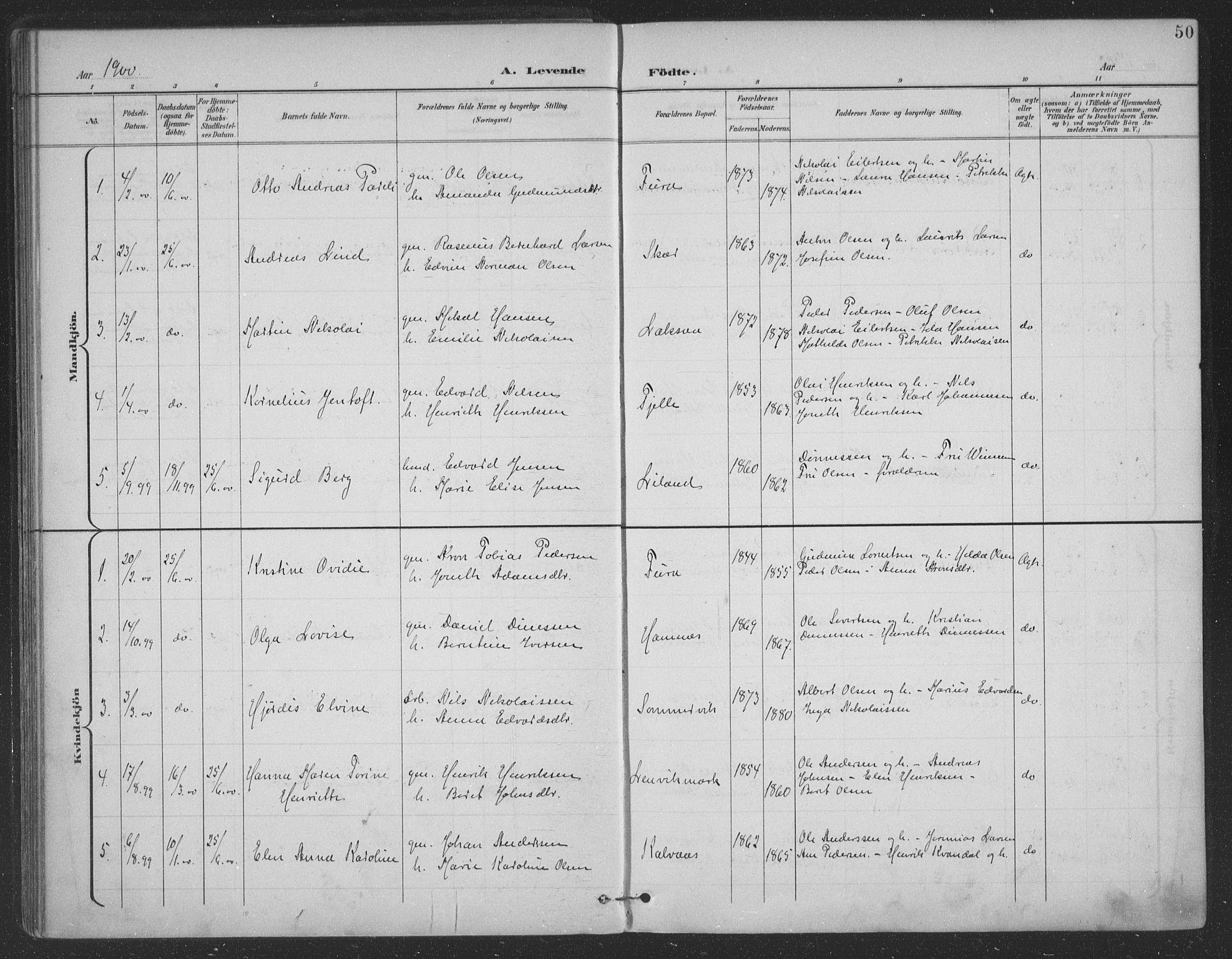 SAT, Ministerialprotokoller, klokkerbøker og fødselsregistre - Nordland, 863/L0899: Ministerialbok nr. 863A11, 1897-1906, s. 50