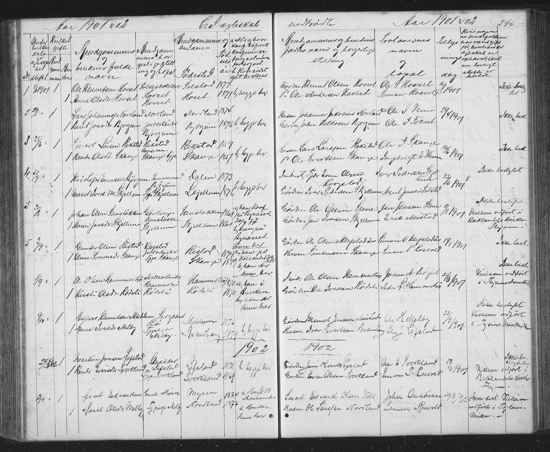 SAT, Ministerialprotokoller, klokkerbøker og fødselsregistre - Sør-Trøndelag, 667/L0798: Klokkerbok nr. 667C03, 1867-1929, s. 246