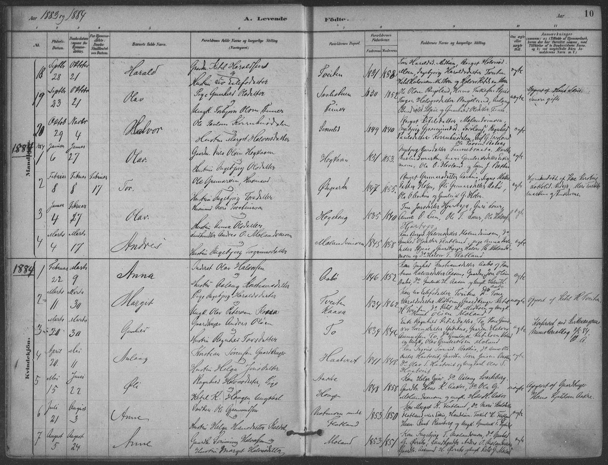 SAKO, Hjartdal kirkebøker, F/Fa/L0010: Ministerialbok nr. I 10, 1880-1929, s. 10