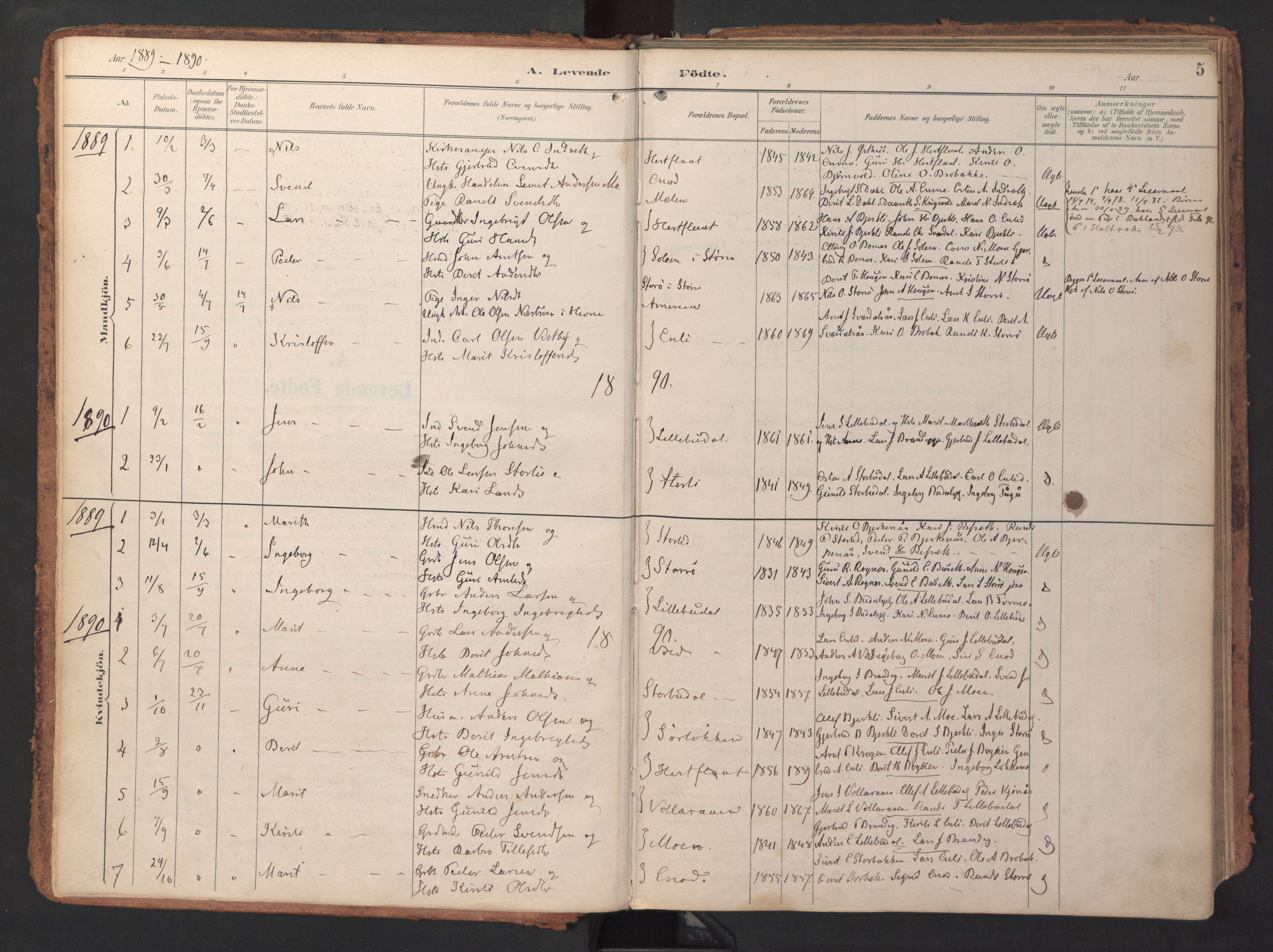 SAT, Ministerialprotokoller, klokkerbøker og fødselsregistre - Sør-Trøndelag, 690/L1050: Ministerialbok nr. 690A01, 1889-1929, s. 5