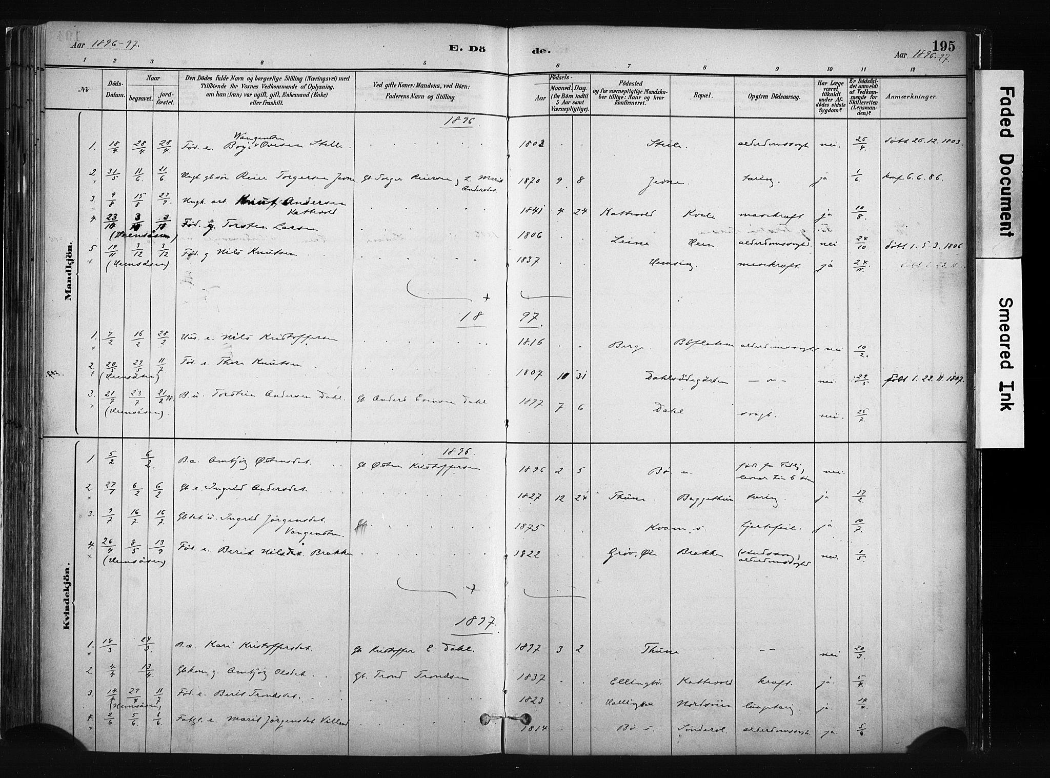 SAH, Vang prestekontor, Valdres, Ministerialbok nr. 8, 1882-1910, s. 195