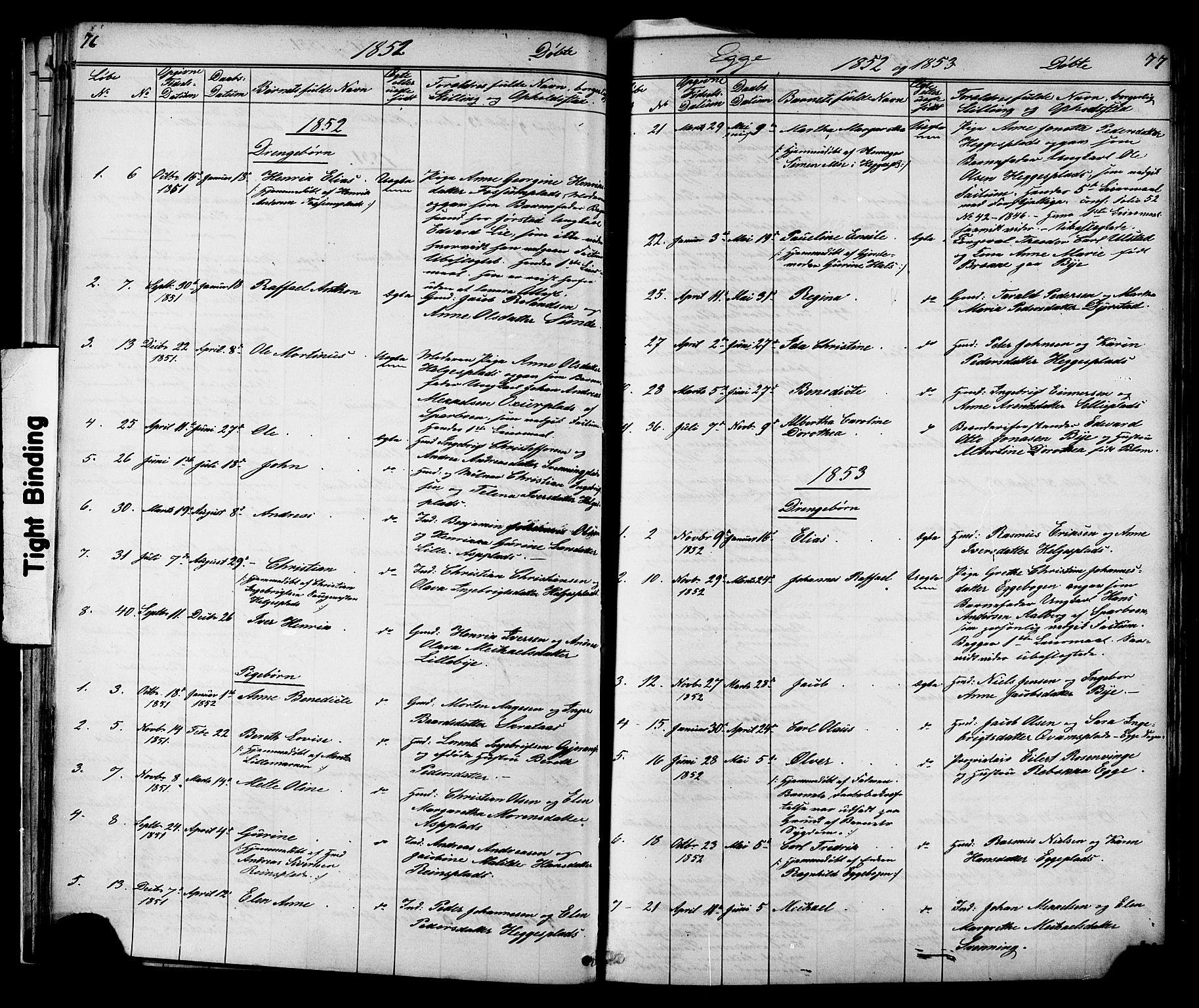 SAT, Ministerialprotokoller, klokkerbøker og fødselsregistre - Nord-Trøndelag, 739/L0367: Ministerialbok nr. 739A01 /3, 1838-1868, s. 76-77