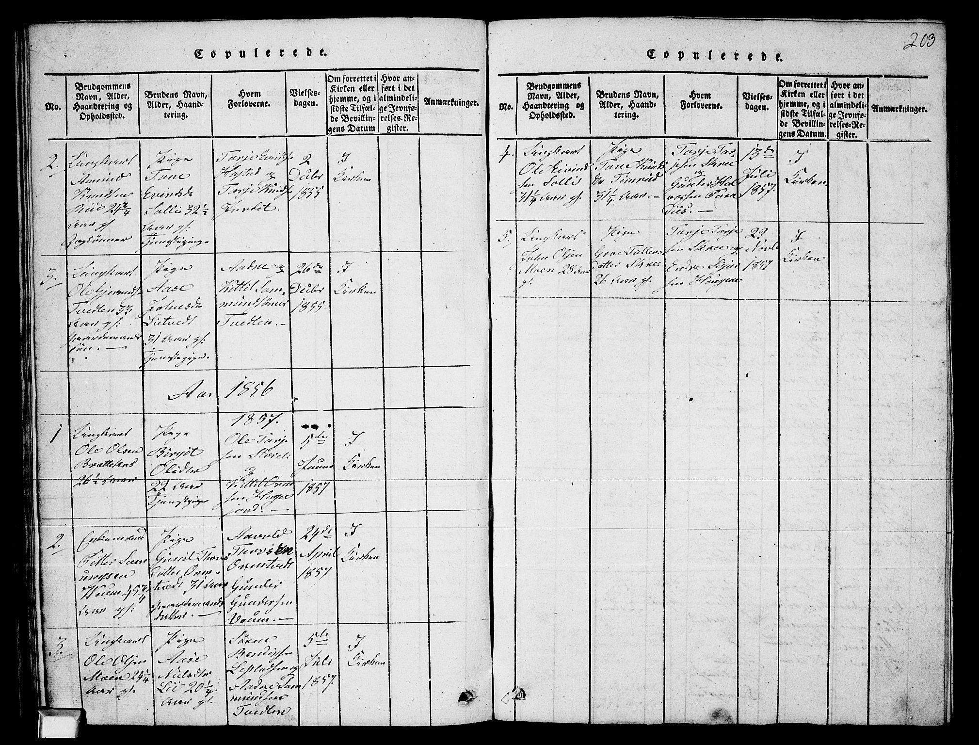 SAKO, Fyresdal kirkebøker, G/Ga/L0003: Klokkerbok nr. I 3, 1815-1863, s. 203