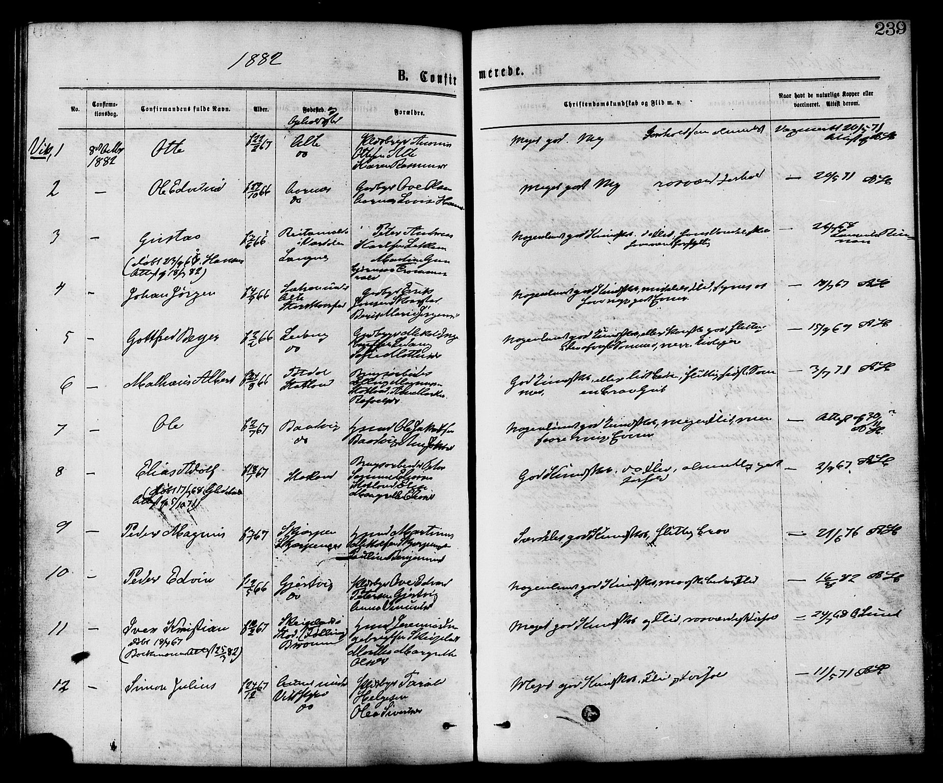 SAT, Ministerialprotokoller, klokkerbøker og fødselsregistre - Nord-Trøndelag, 773/L0616: Ministerialbok nr. 773A07, 1870-1887, s. 239