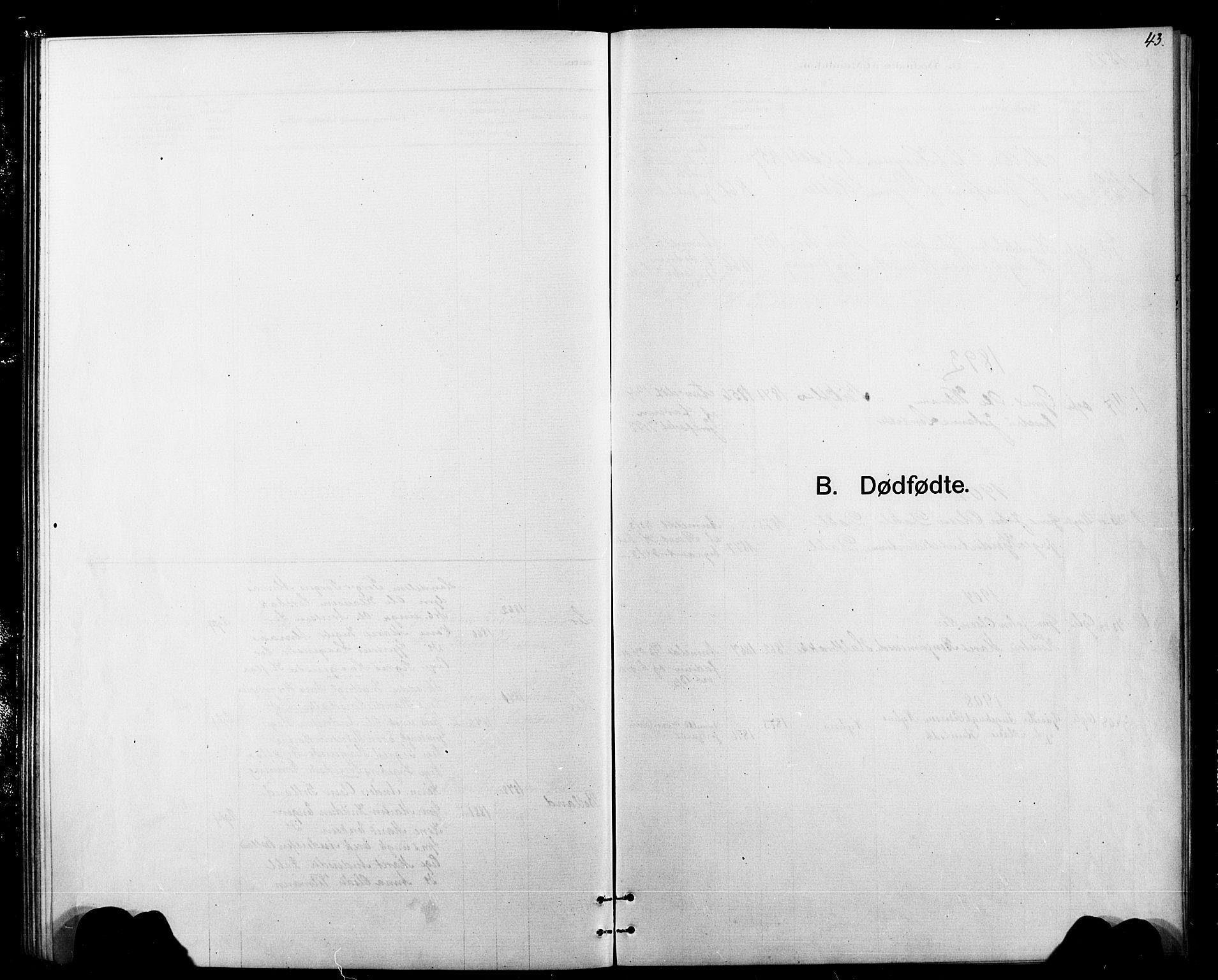 SAT, Ministerialprotokoller, klokkerbøker og fødselsregistre - Sør-Trøndelag, 693/L1123: Klokkerbok nr. 693C04, 1887-1910, s. 43