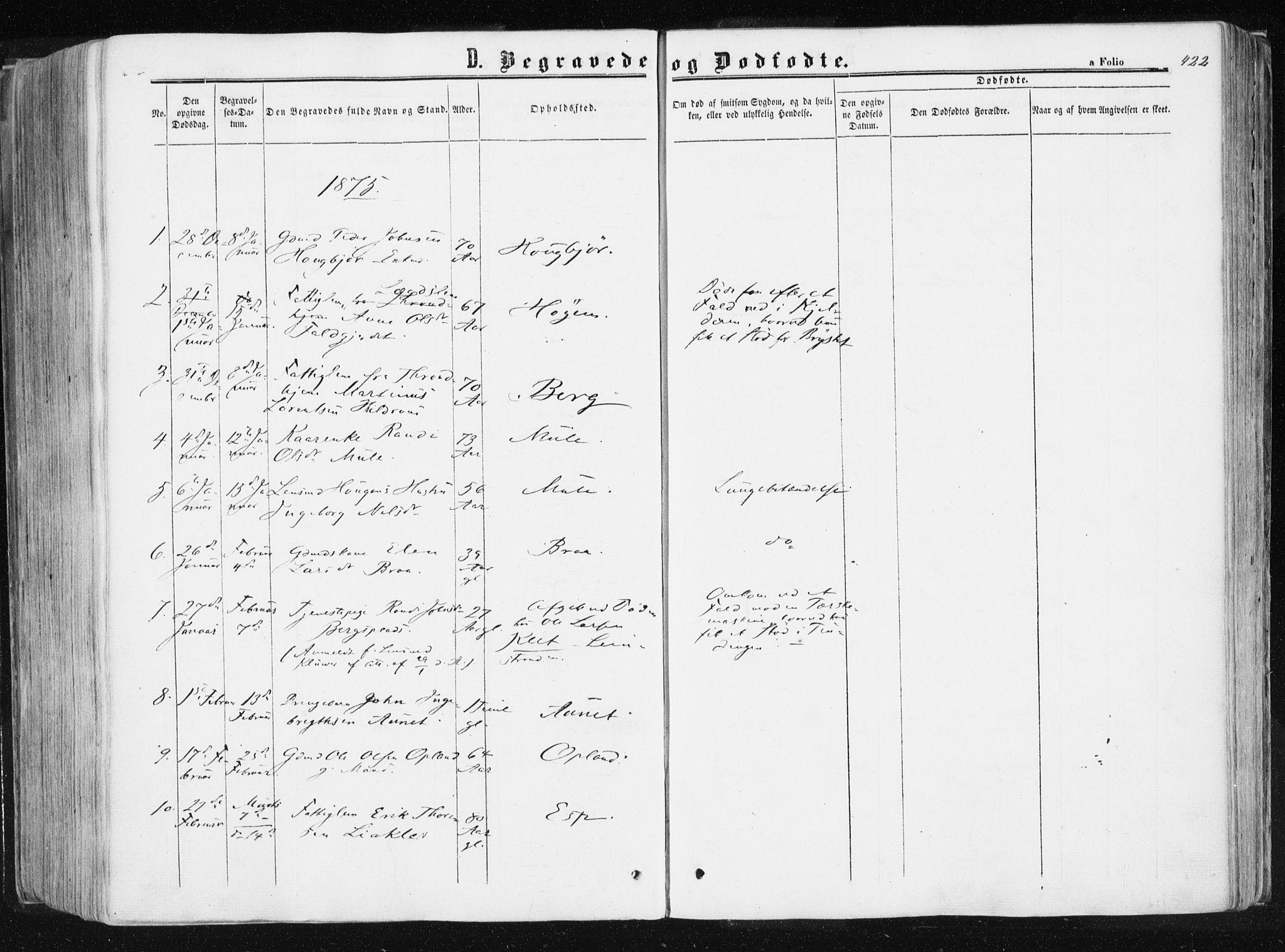 SAT, Ministerialprotokoller, klokkerbøker og fødselsregistre - Sør-Trøndelag, 612/L0377: Ministerialbok nr. 612A09, 1859-1877, s. 422