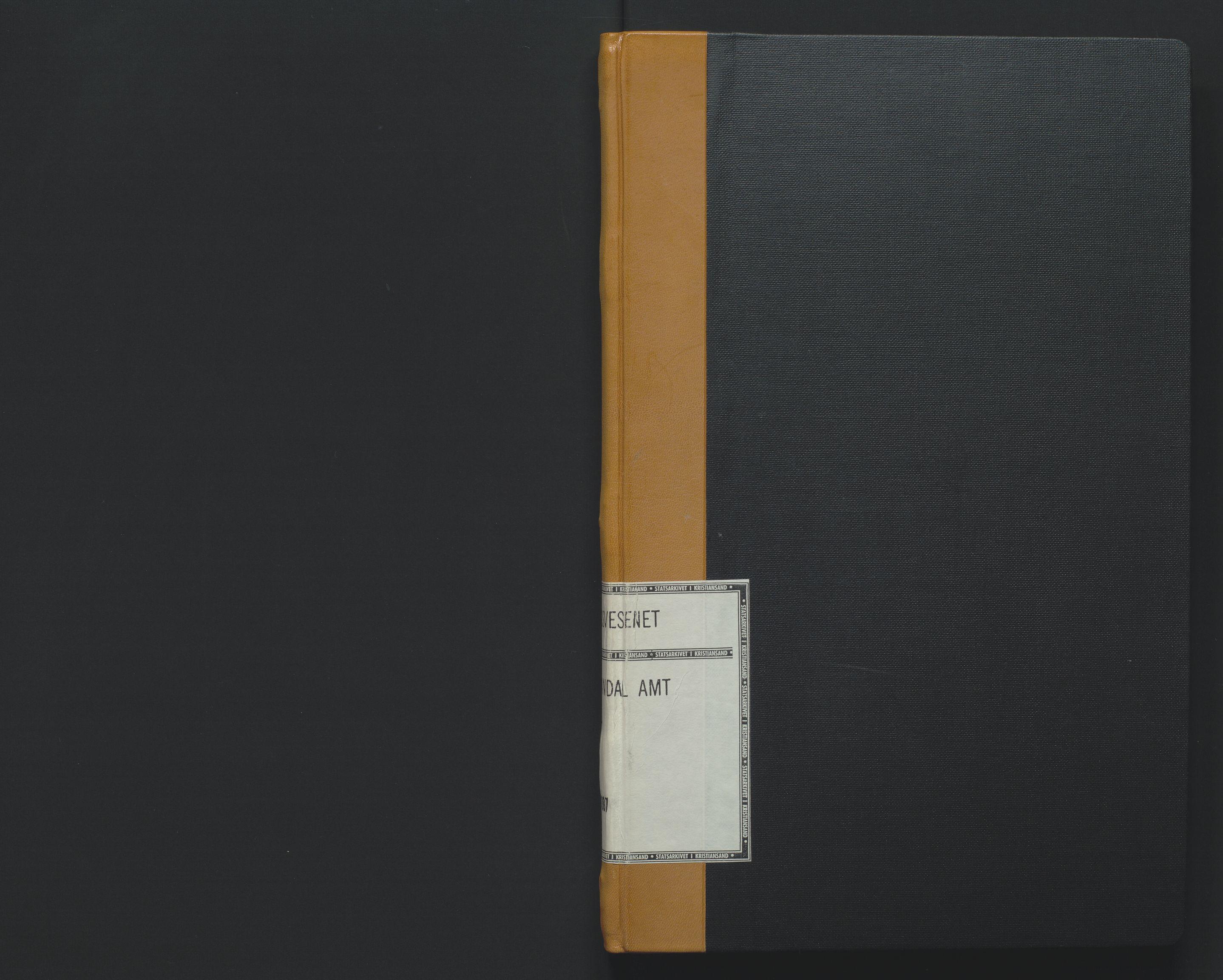 SAK, Utskiftningsformannen i Lister og Mandal amt, F/Fa/Faa/L0017: Utskiftningsprotokoll med register nr 17, 1885-1887