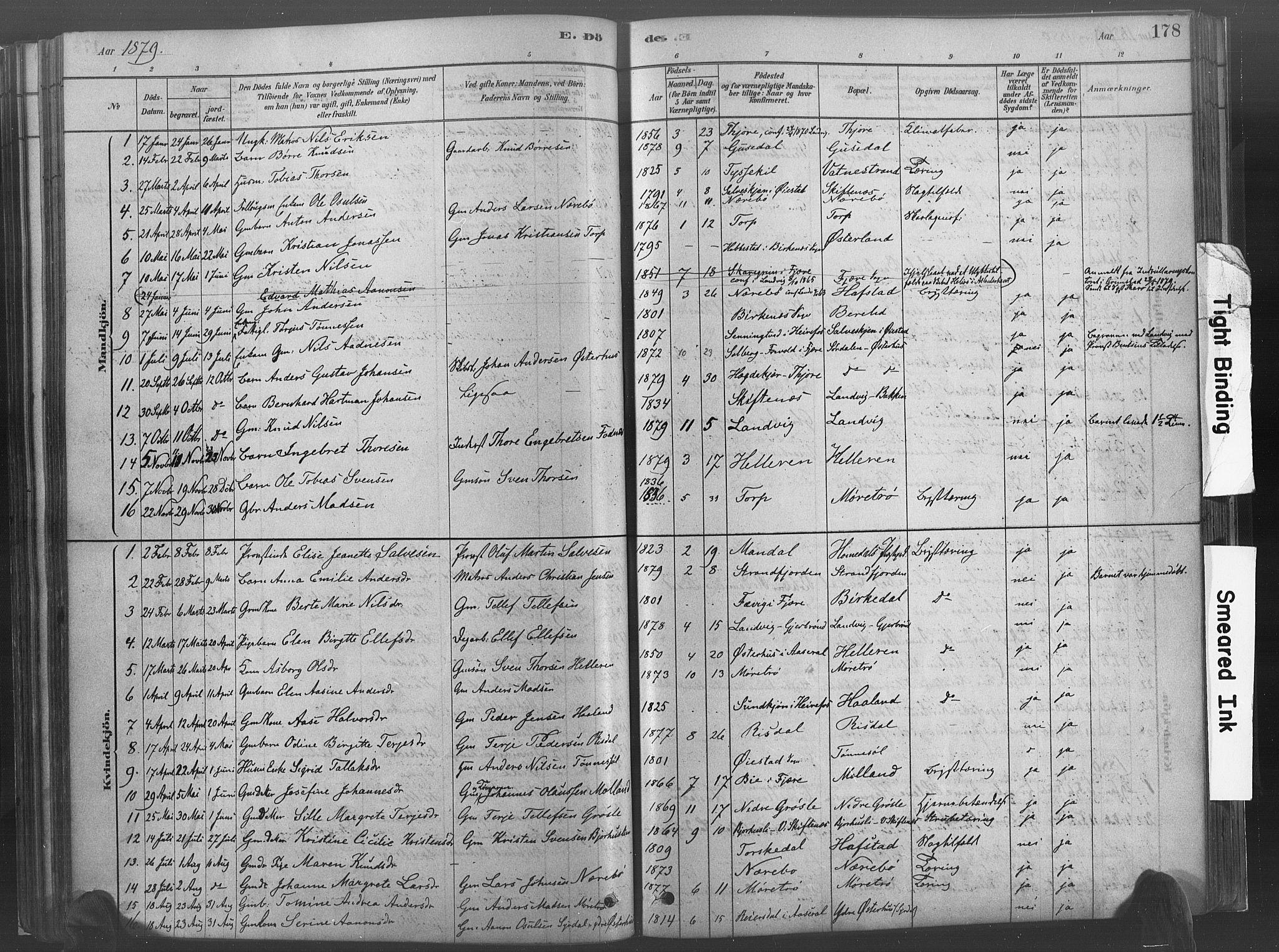 SAK, Hommedal sokneprestkontor, F/Fa/Fab/L0006: Ministerialbok nr. A 6, 1878-1897, s. 178
