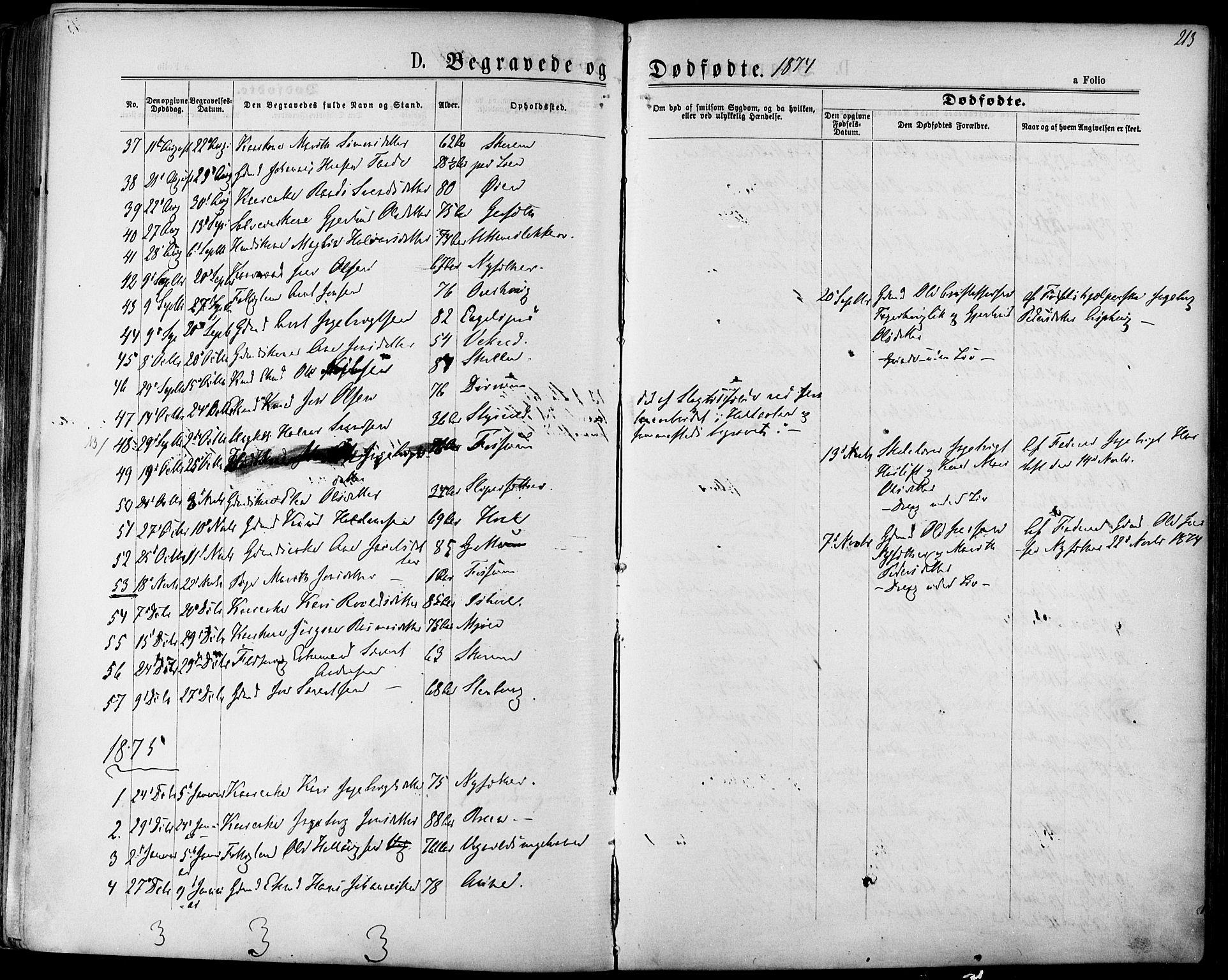 SAT, Ministerialprotokoller, klokkerbøker og fødselsregistre - Sør-Trøndelag, 678/L0900: Ministerialbok nr. 678A09, 1872-1881, s. 213