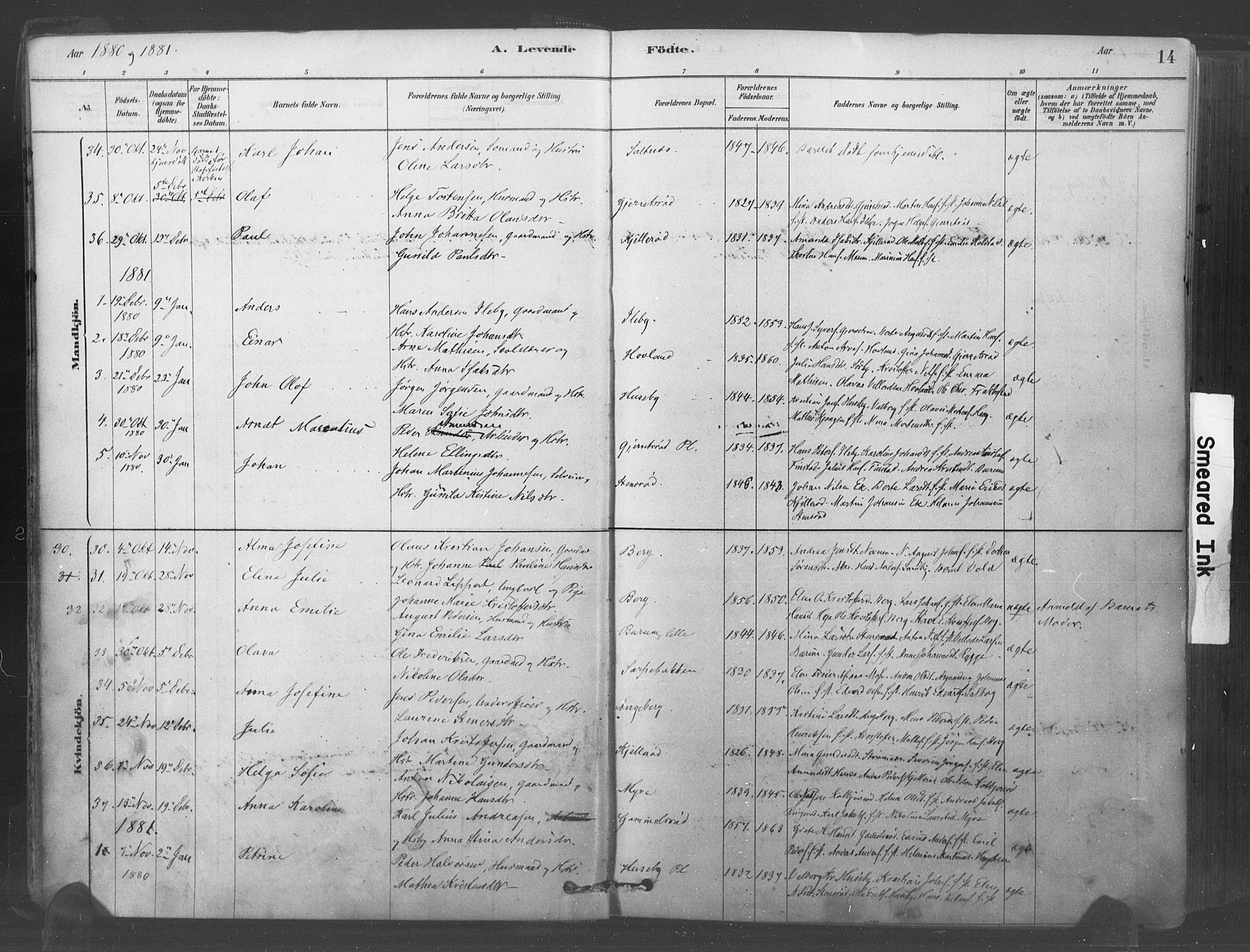 SAO, Råde prestekontor kirkebøker, F/Fa/L0007: Ministerialbok nr. 7, 1878-1902, s. 14
