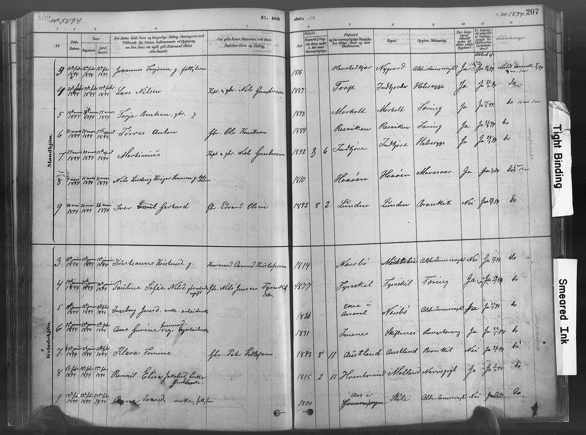 SAK, Hommedal sokneprestkontor, F/Fa/Fab/L0006: Ministerialbok nr. A 6, 1878-1897, s. 207