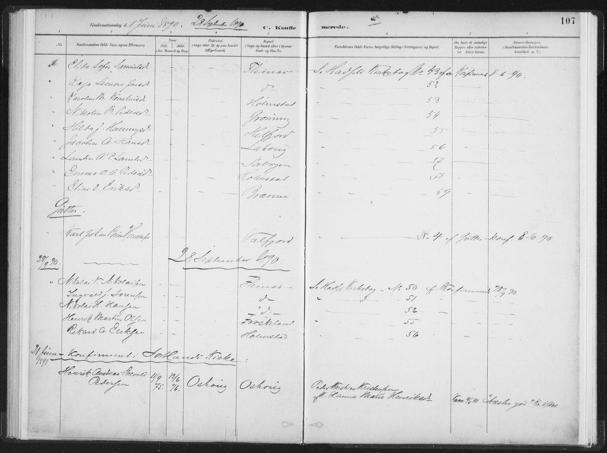 SAT, Ministerialprotokoller, klokkerbøker og fødselsregistre - Nordland, 890/L1286: Ministerialbok nr. 890A01, 1882-1902, s. 107