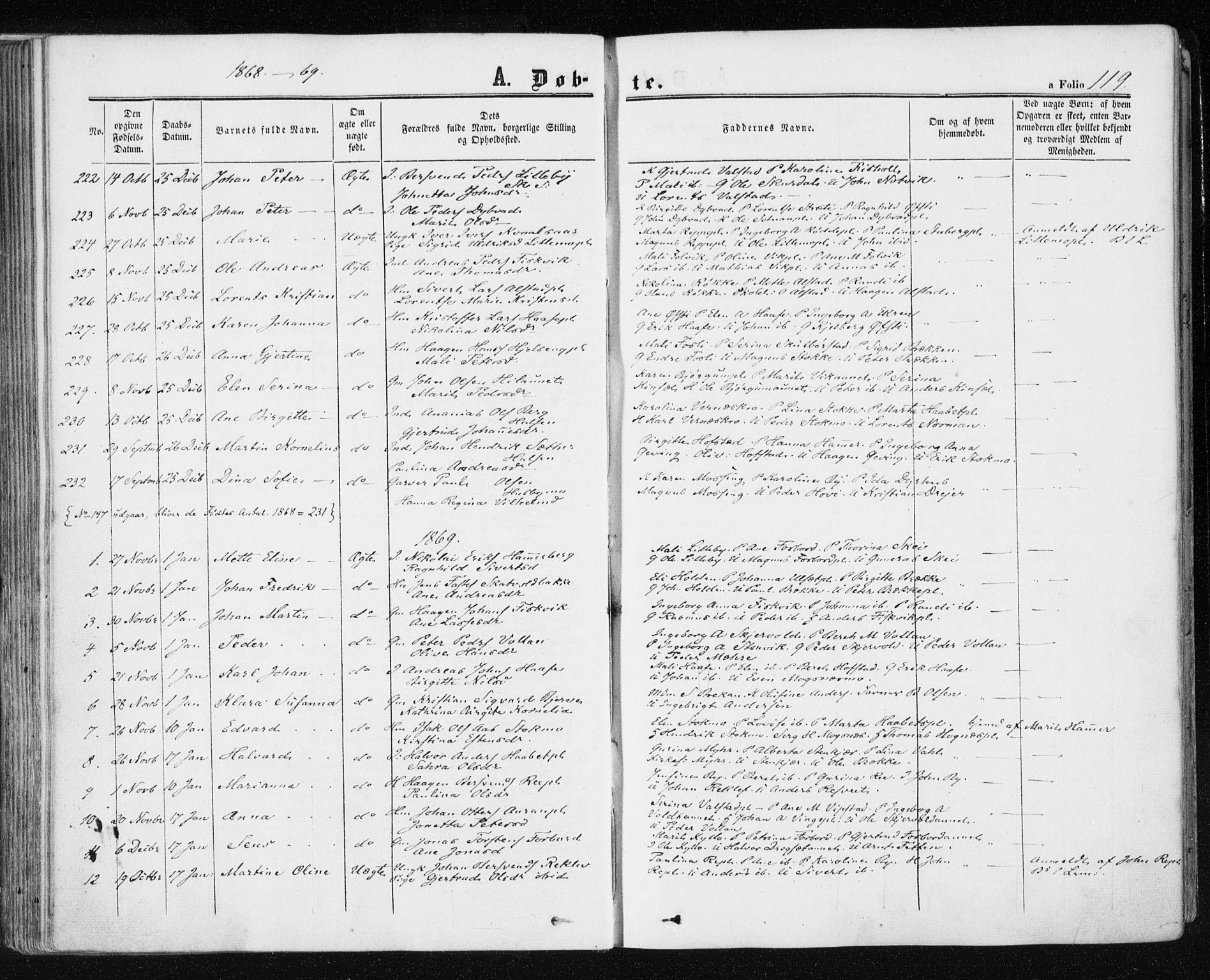 SAT, Ministerialprotokoller, klokkerbøker og fødselsregistre - Nord-Trøndelag, 709/L0075: Ministerialbok nr. 709A15, 1859-1870, s. 119