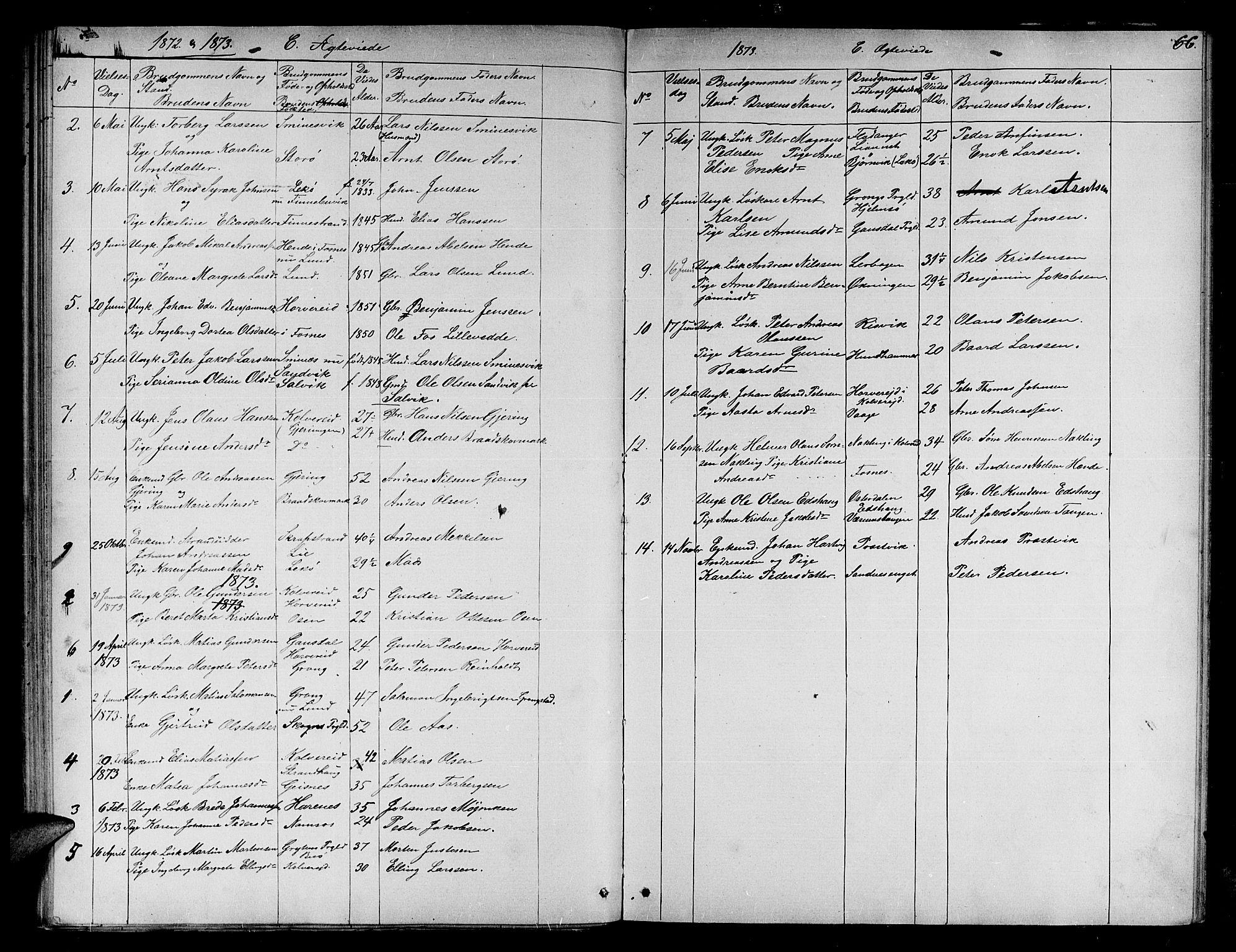 SAT, Ministerialprotokoller, klokkerbøker og fødselsregistre - Nord-Trøndelag, 780/L0650: Klokkerbok nr. 780C02, 1866-1884, s. 66