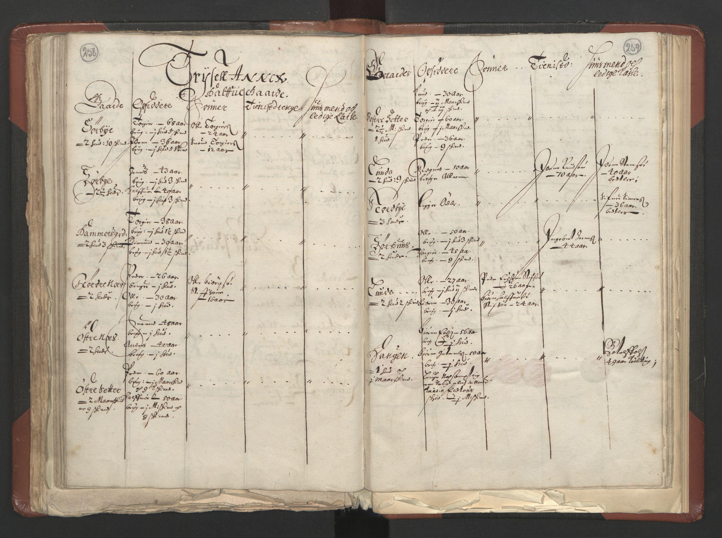 RA, Fogdenes og sorenskrivernes manntall 1664-1666, nr. 3: Hedmark fogderi og Solør, Østerdal og Odal fogderi, 1664, s. 258-259