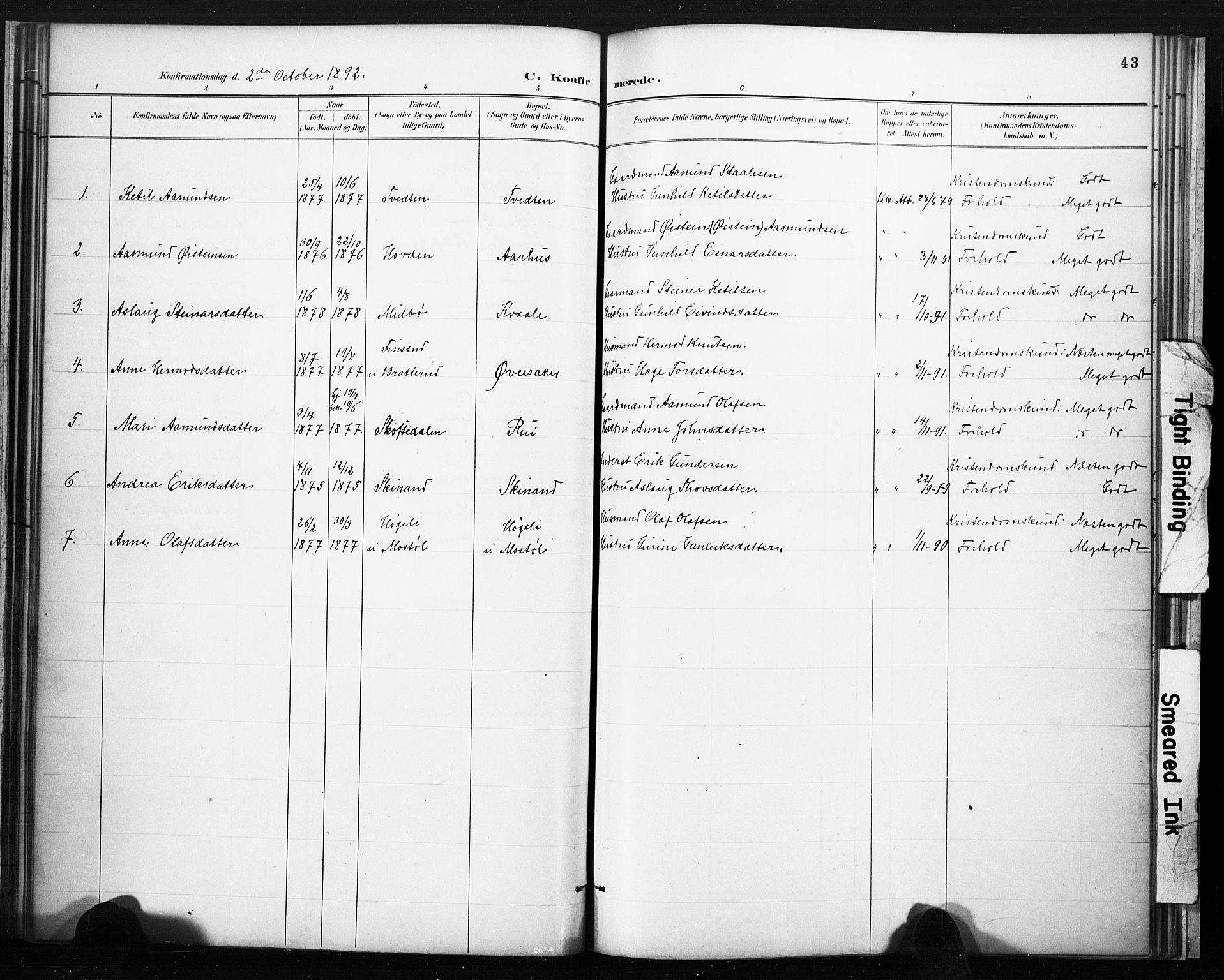 SAKO, Lårdal kirkebøker, F/Fc/L0002: Ministerialbok nr. III 2, 1887-1906, s. 43