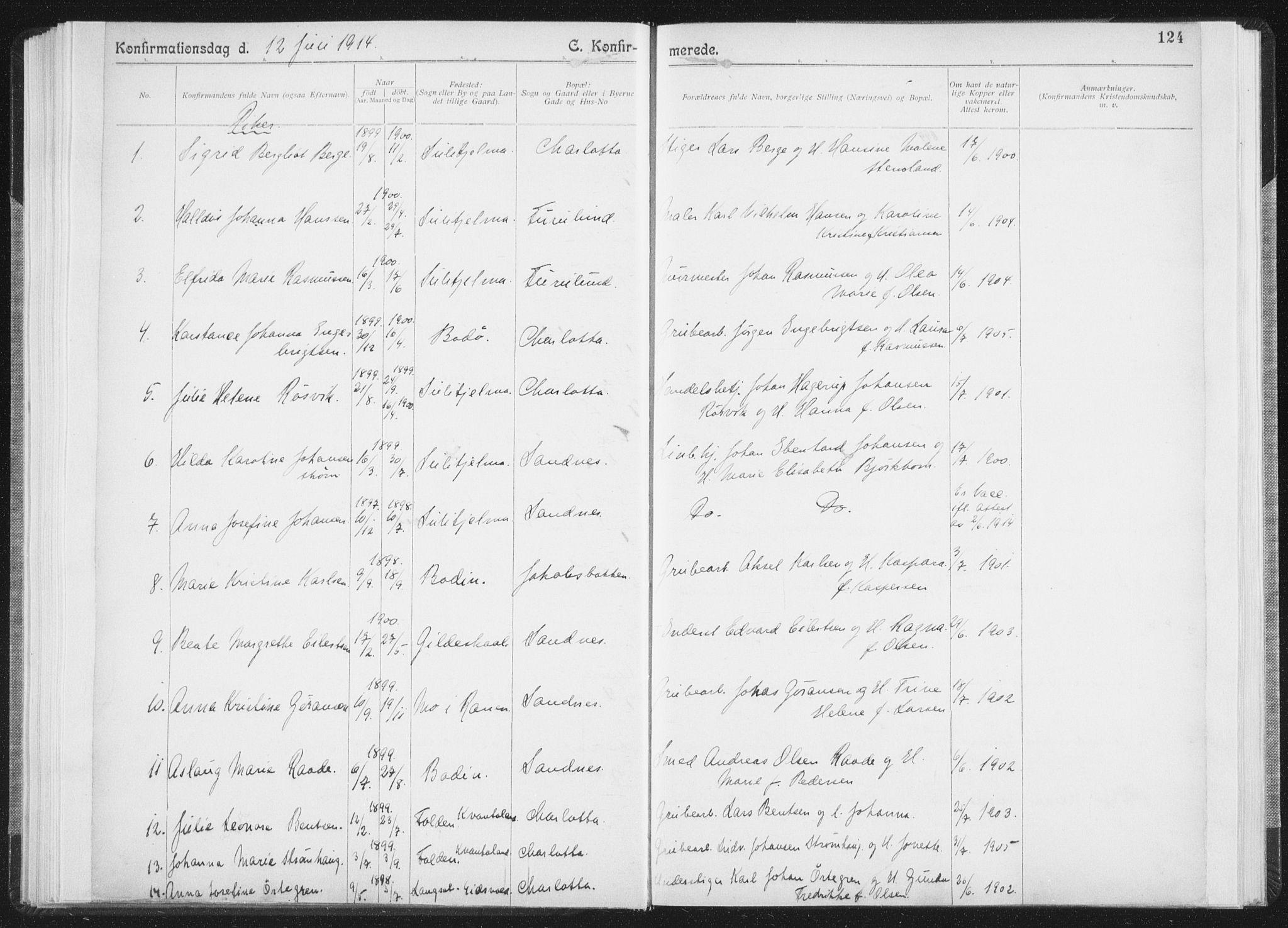 SAT, Ministerialprotokoller, klokkerbøker og fødselsregistre - Nordland, 850/L0711: Residerende kapellans bok nr. 850B01, 1902-1915, s. 124