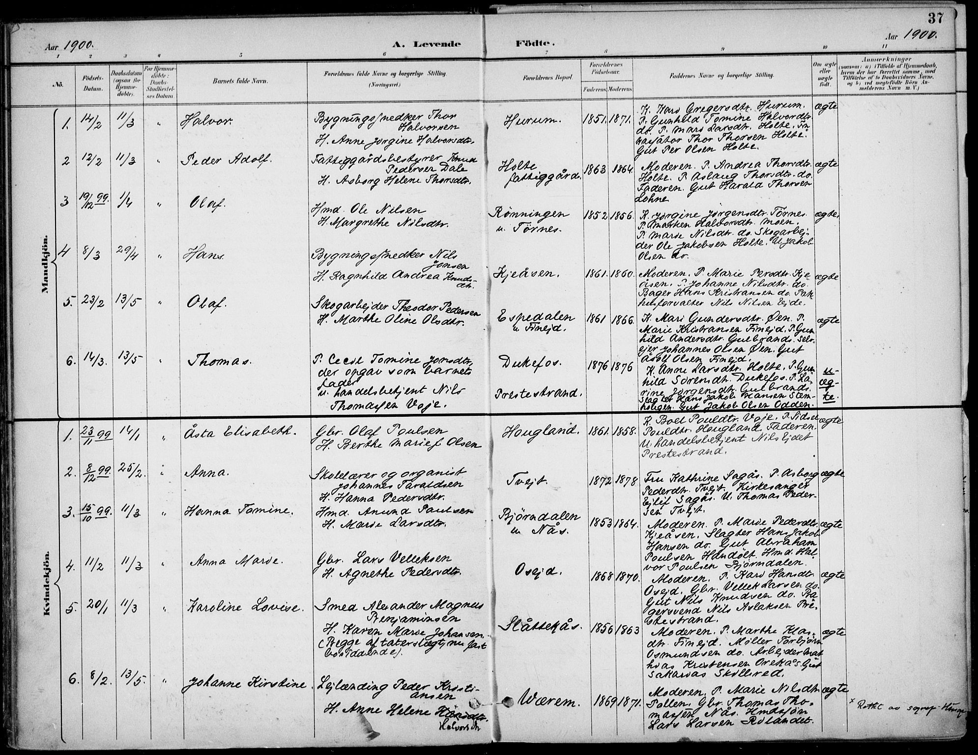 SAKO, Drangedal kirkebøker, F/Fa/L0012: Ministerialbok nr. 12, 1895-1905, s. 37