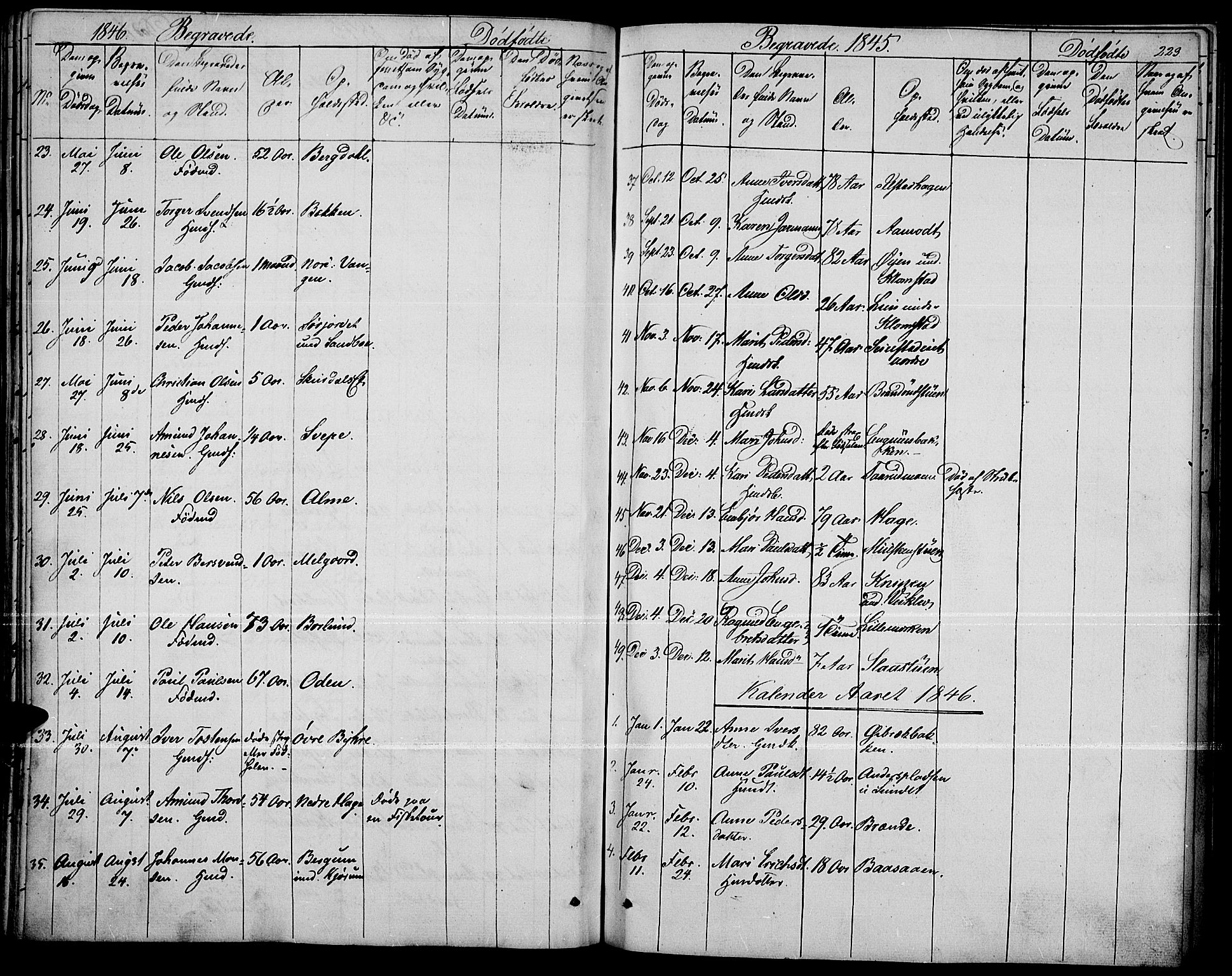 SAH, Fron prestekontor, H/Ha/Haa/L0004: Ministerialbok nr. 4, 1839-1848, s. 223