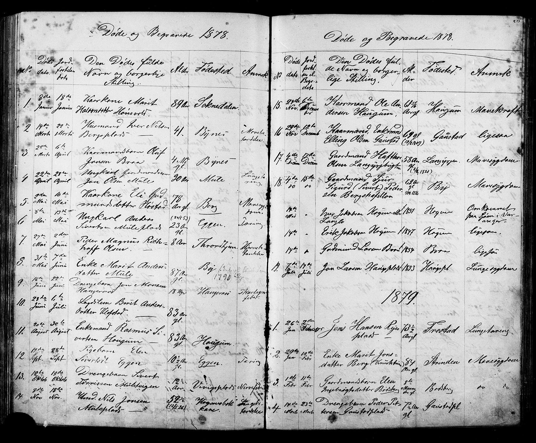 SAT, Ministerialprotokoller, klokkerbøker og fødselsregistre - Sør-Trøndelag, 612/L0387: Klokkerbok nr. 612C03, 1874-1908, s. 215