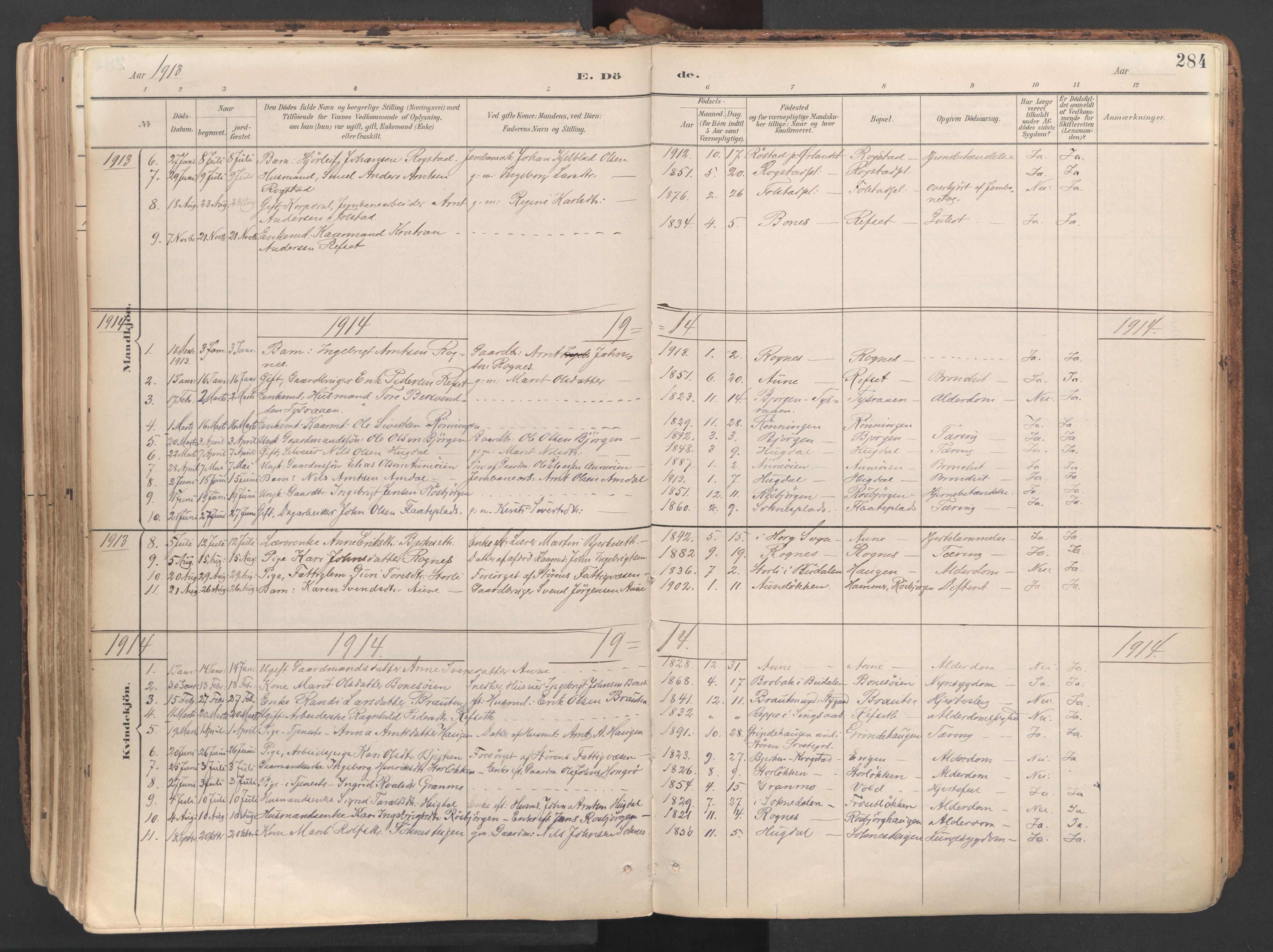 SAT, Ministerialprotokoller, klokkerbøker og fødselsregistre - Sør-Trøndelag, 687/L1004: Ministerialbok nr. 687A10, 1891-1923, s. 284