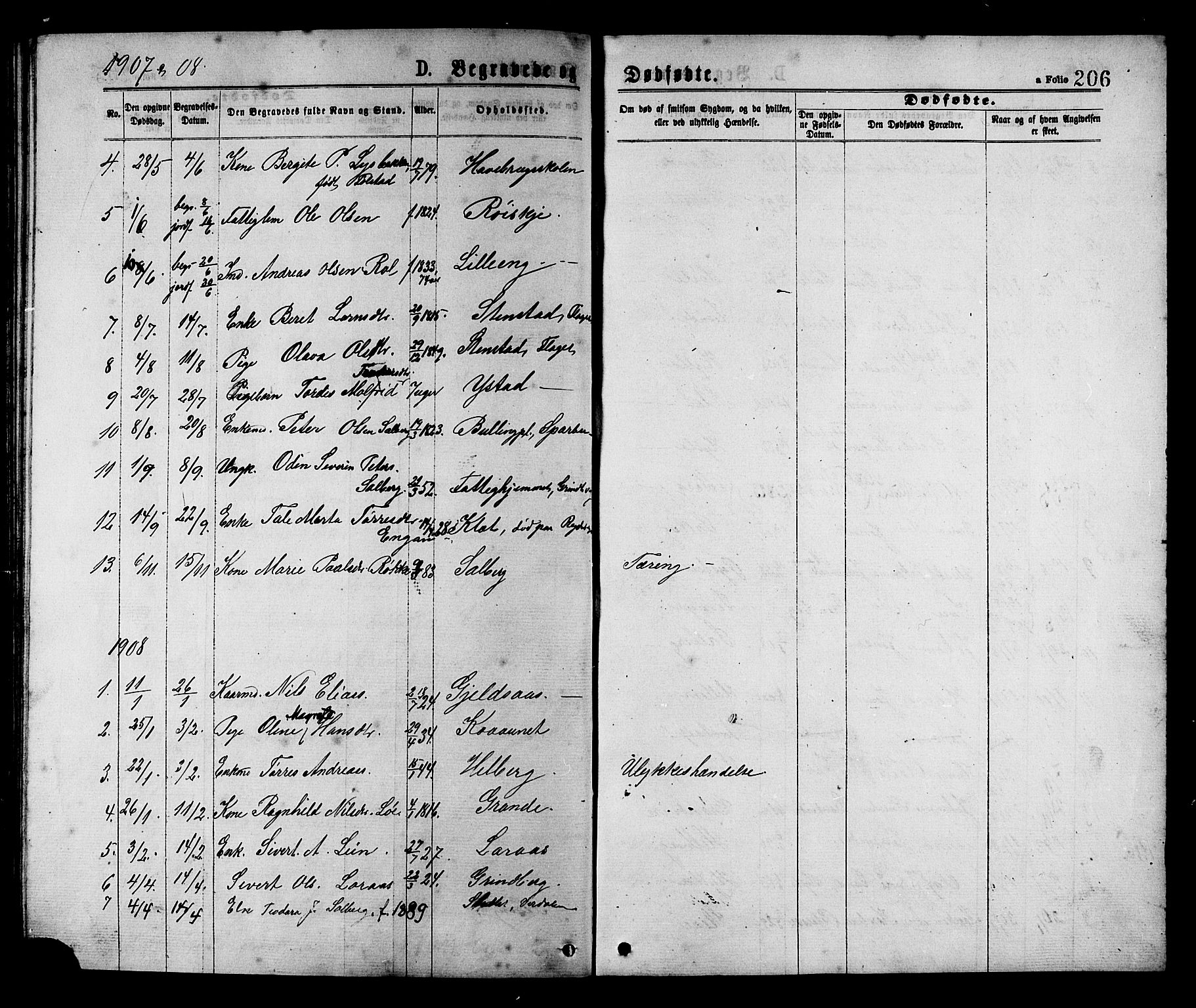 SAT, Ministerialprotokoller, klokkerbøker og fødselsregistre - Nord-Trøndelag, 731/L0311: Klokkerbok nr. 731C02, 1875-1911, s. 206