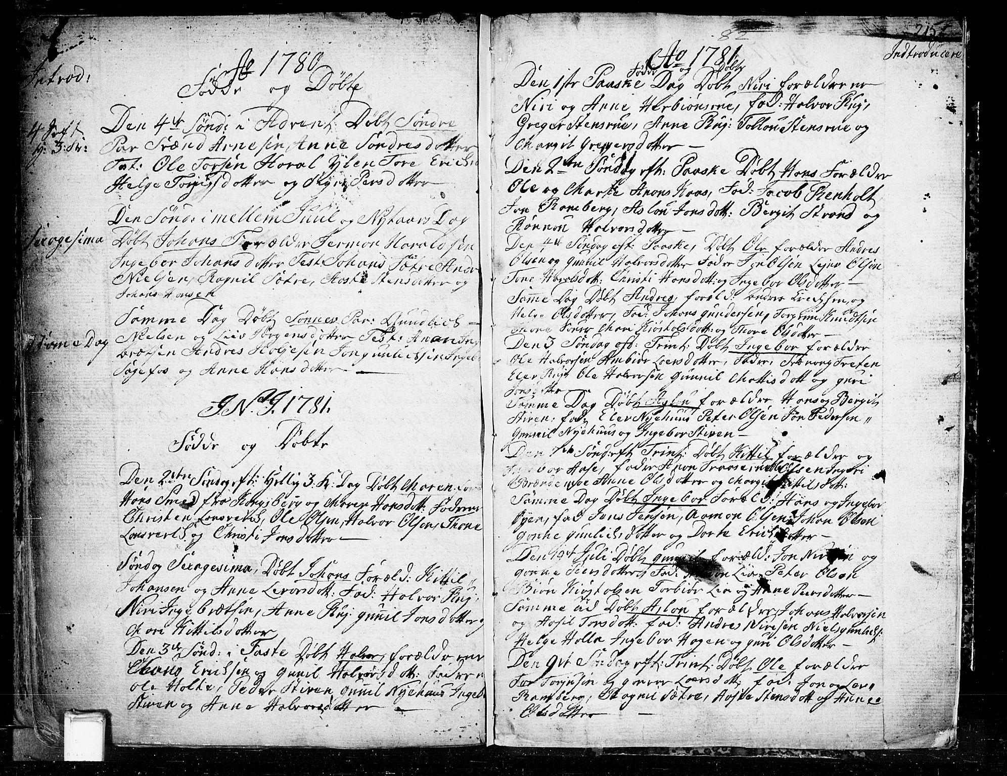 SAKO, Heddal kirkebøker, F/Fa/L0003: Ministerialbok nr. I 3, 1723-1783, s. 215