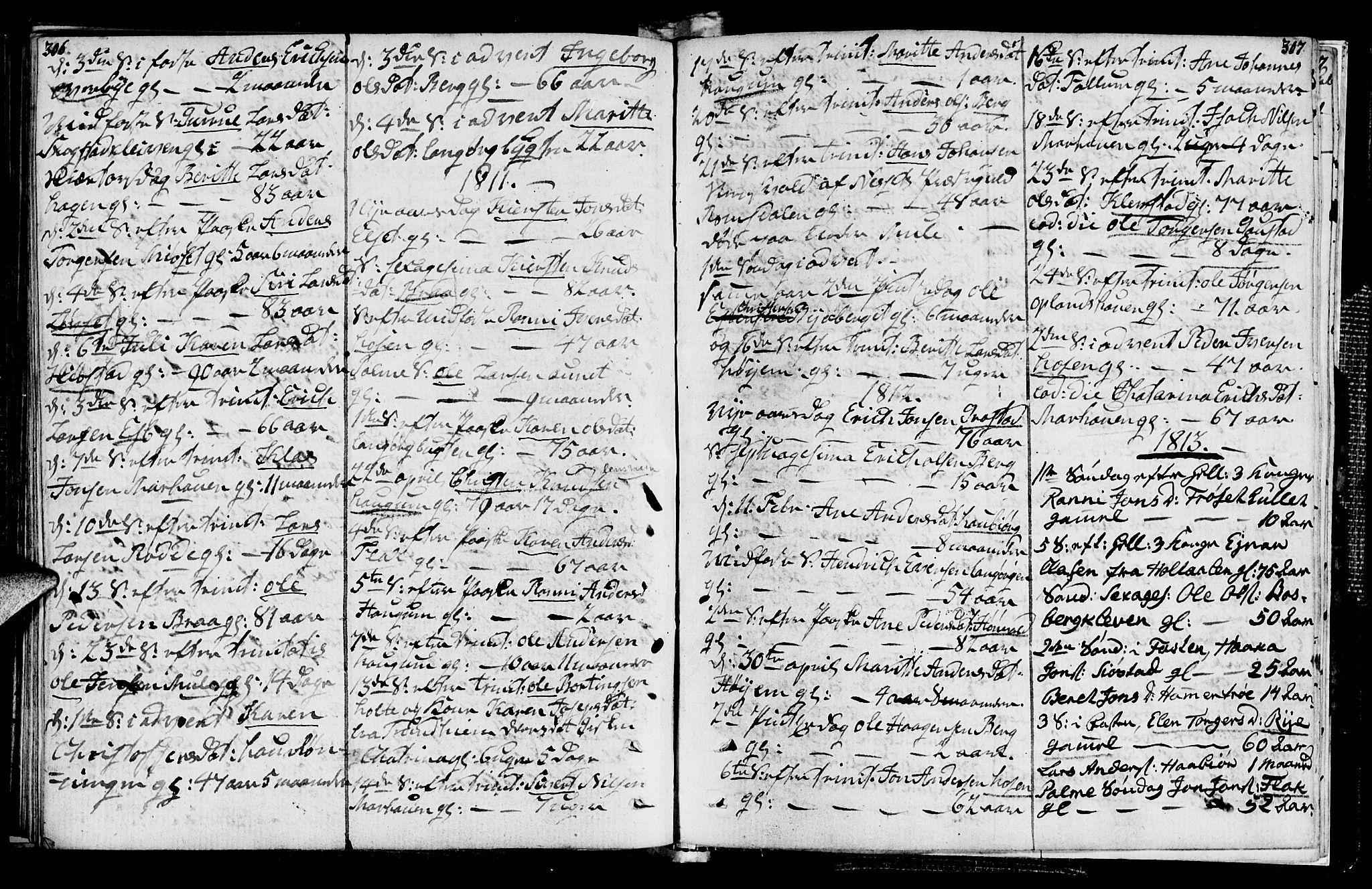 SAT, Ministerialprotokoller, klokkerbøker og fødselsregistre - Sør-Trøndelag, 612/L0371: Ministerialbok nr. 612A05, 1803-1816, s. 306-307